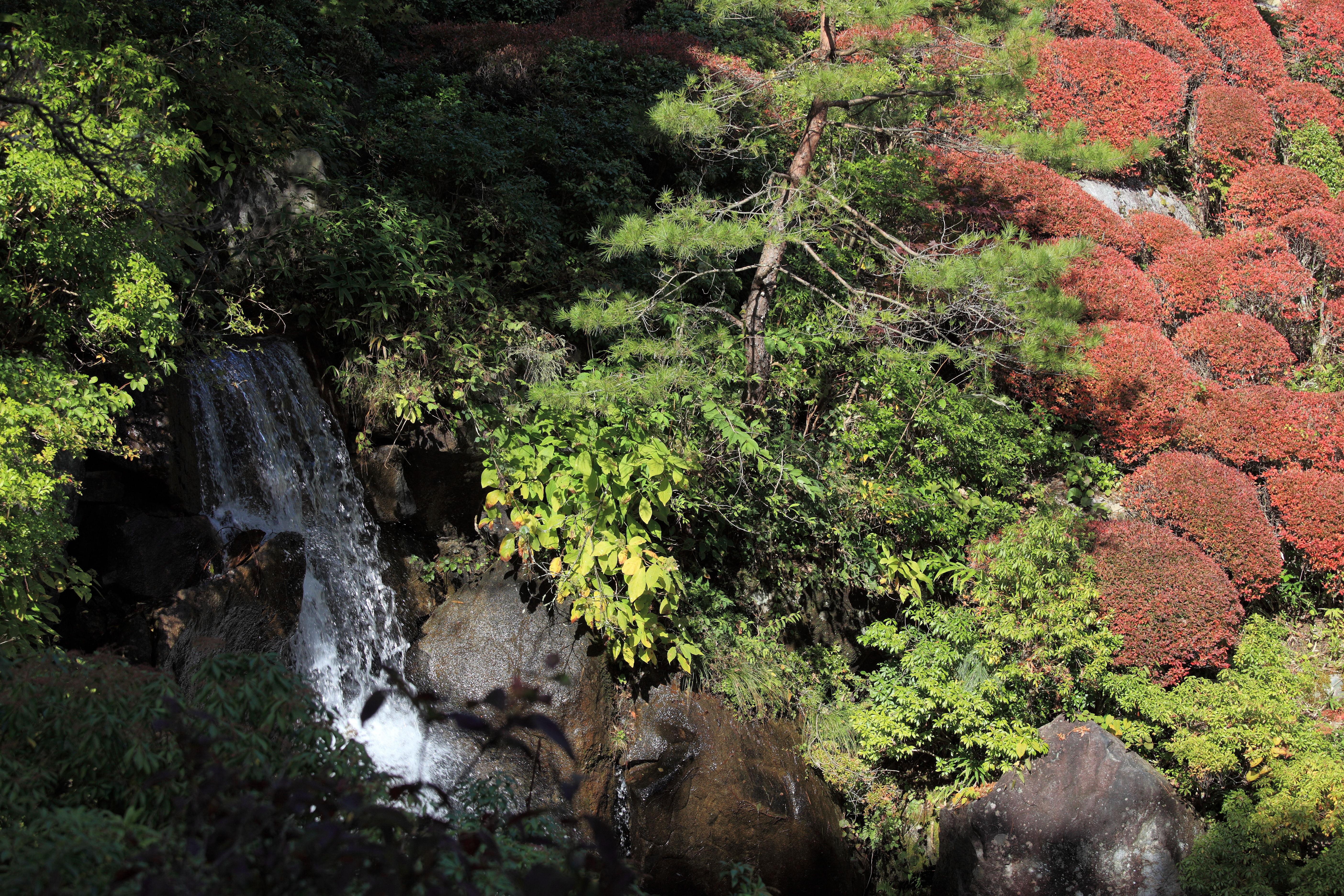 Rots waterval tuin canvas kleine waterval in de japanse for Zen tuin aanleggen