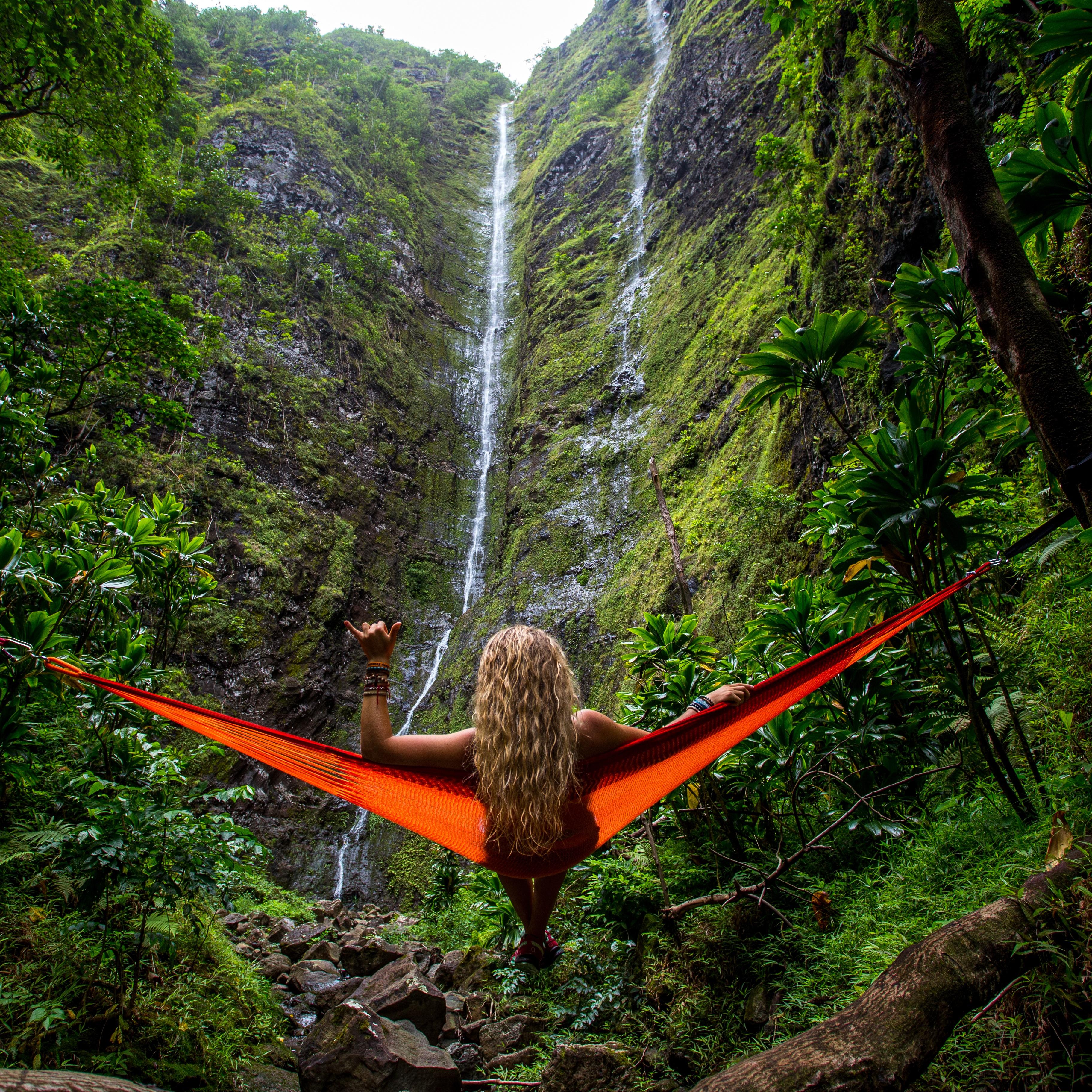 Images Gratuites Arbre La Nature Cascade Région Sauvage Plante