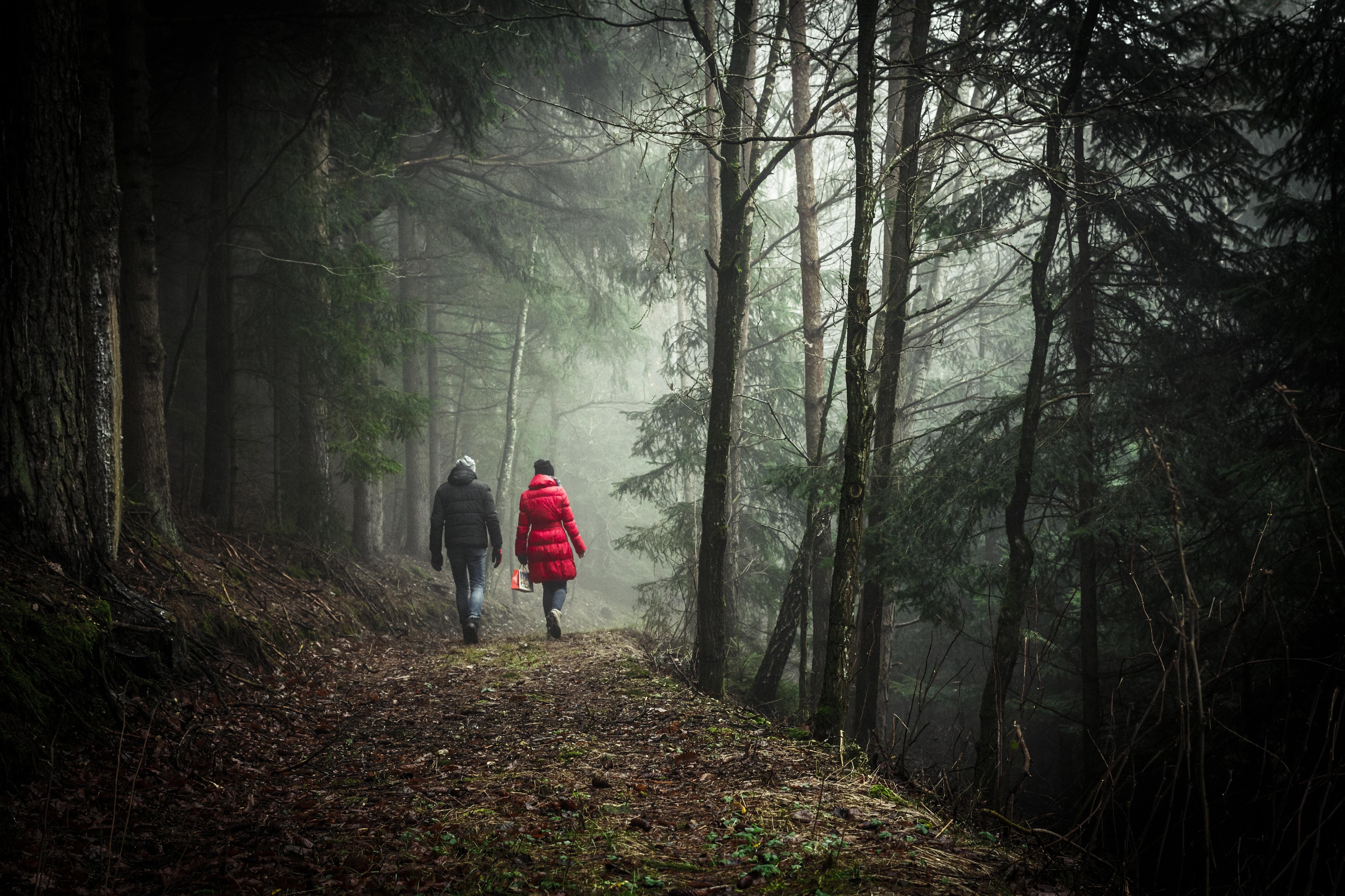 видео парочка пошла погулять в лес - 8