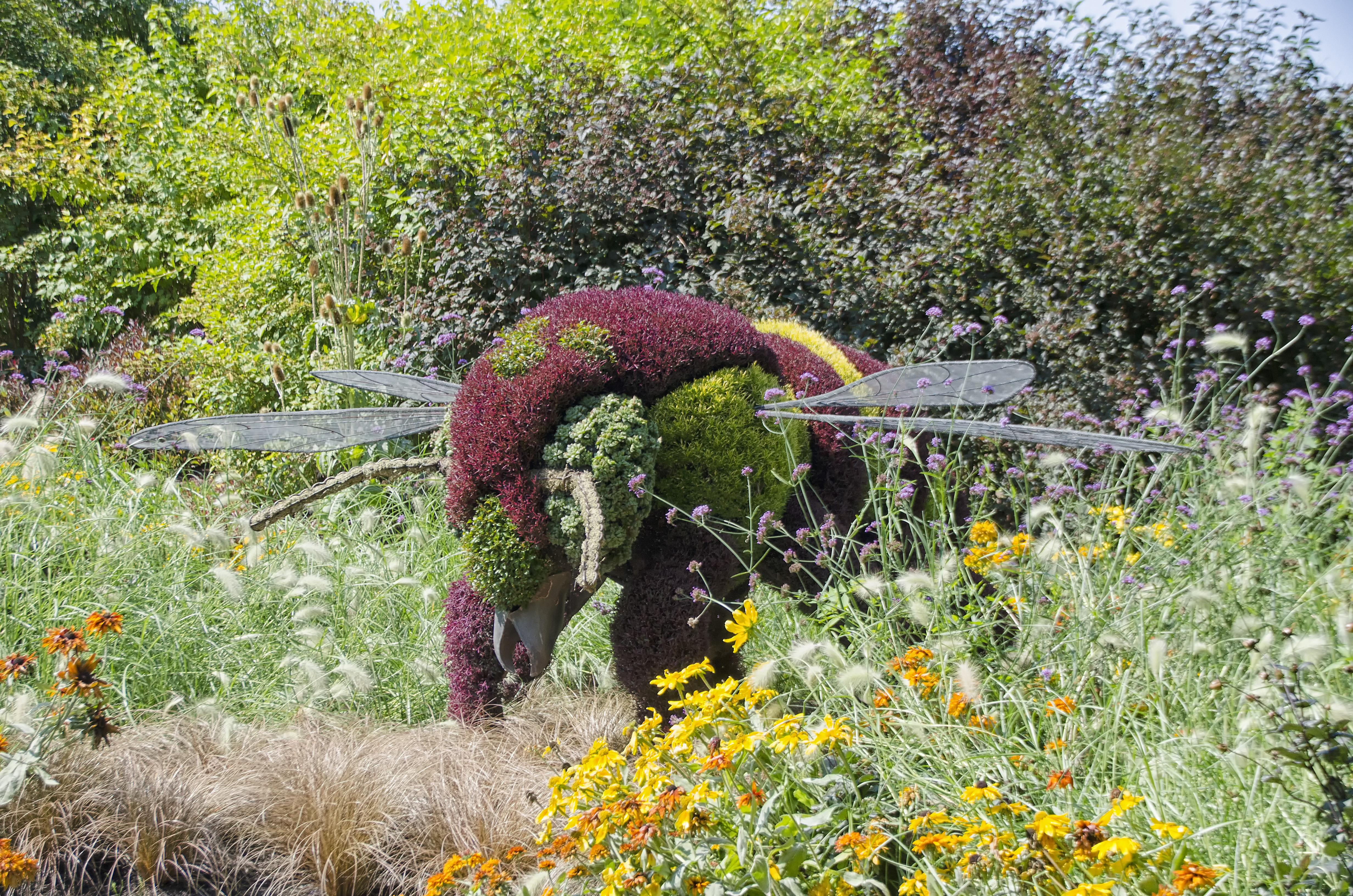 Купить цветы и кустарники ботанический сад владивосток, метро павелецкая
