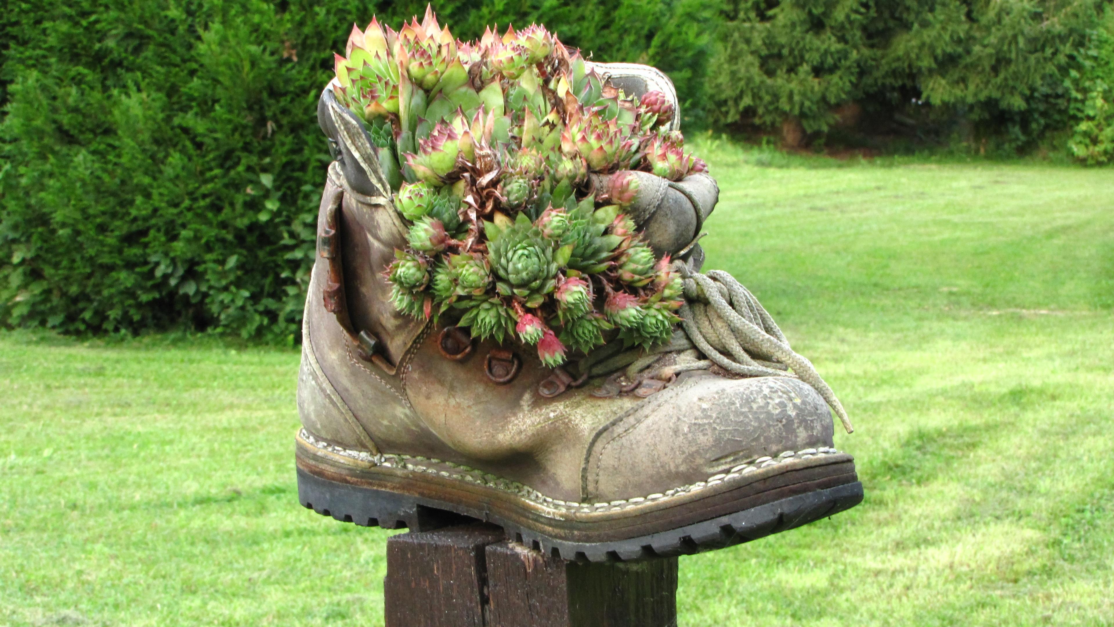 chaussure de jardin