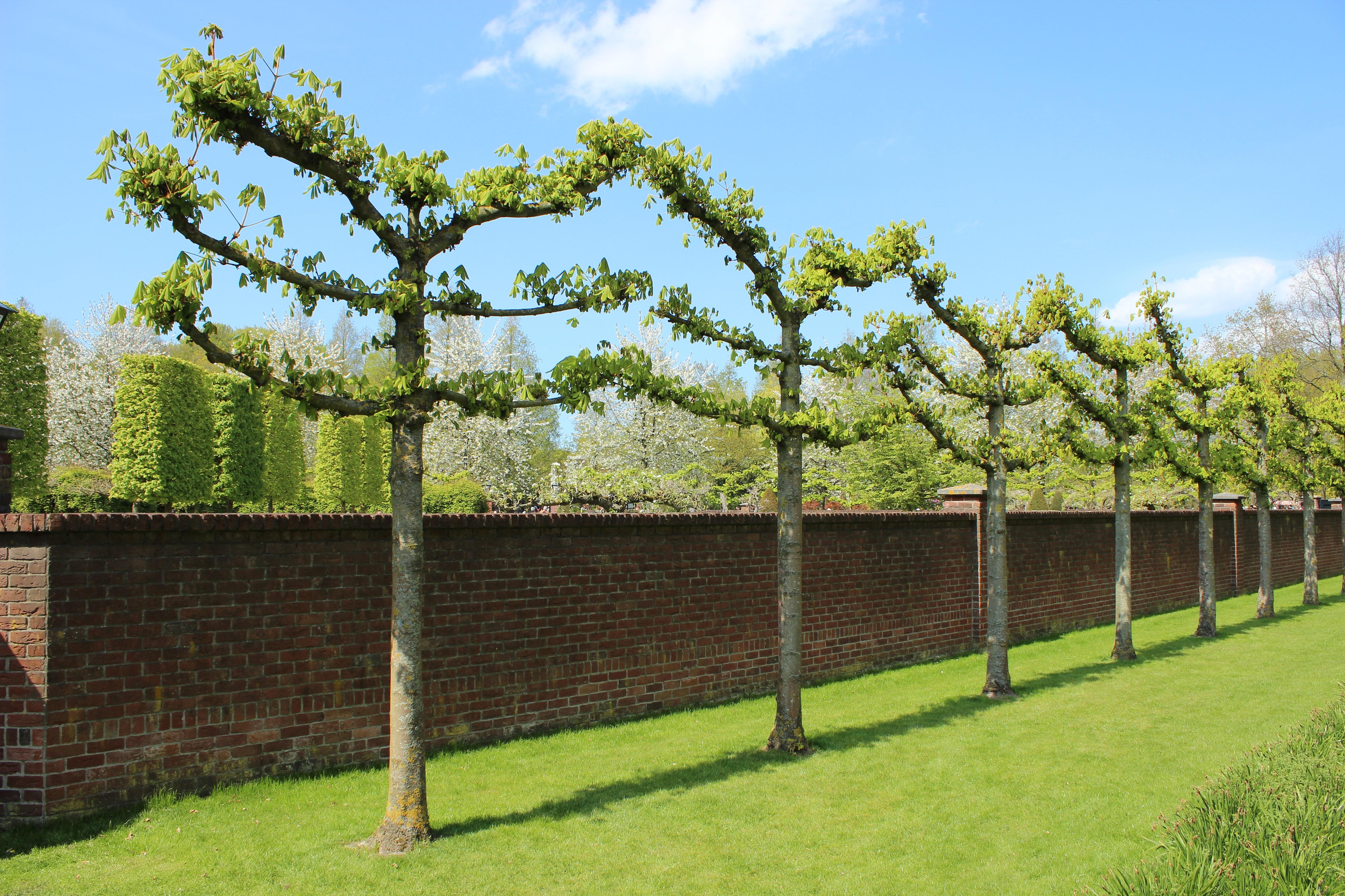 matériel de clôture de jardin