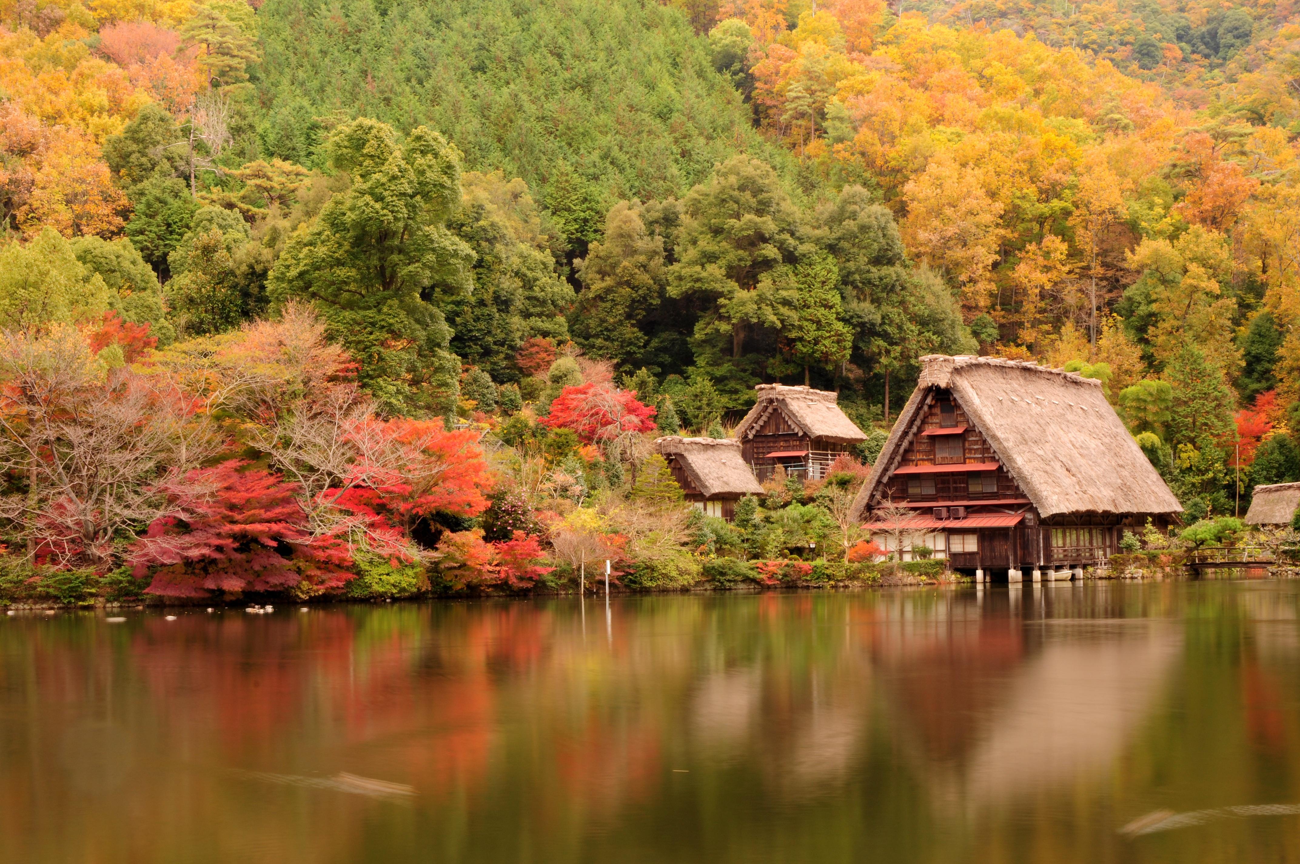 Kostenlose foto baum natur pflanze blatt blume see for Traditionelles japan