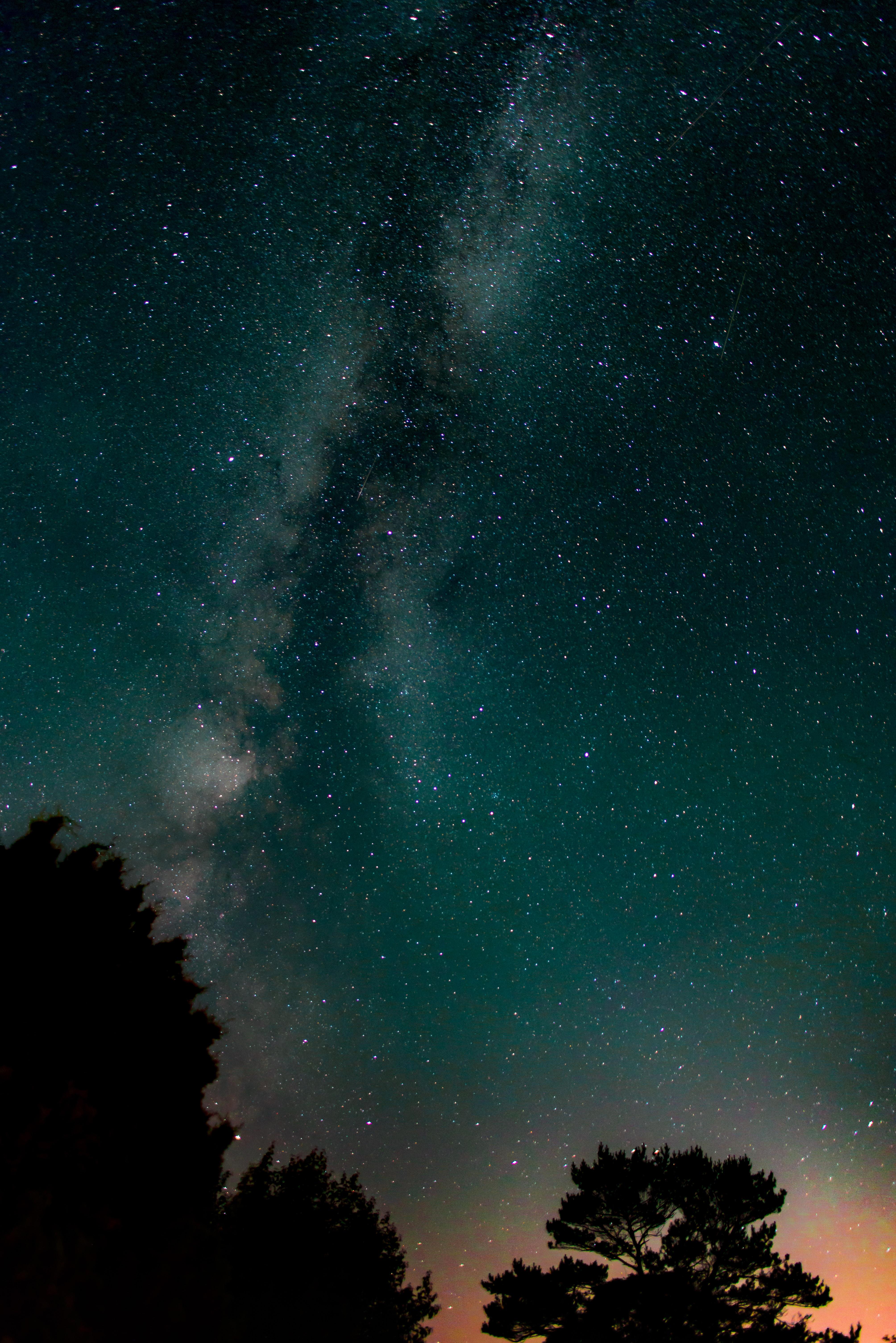 Gambar Pohon Langit Bintang Bima Sakti Suasana Ruang