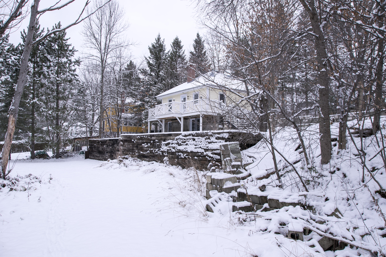 Images Gratuites : arbre, la nature, neige, hiver, Météo, saison ...