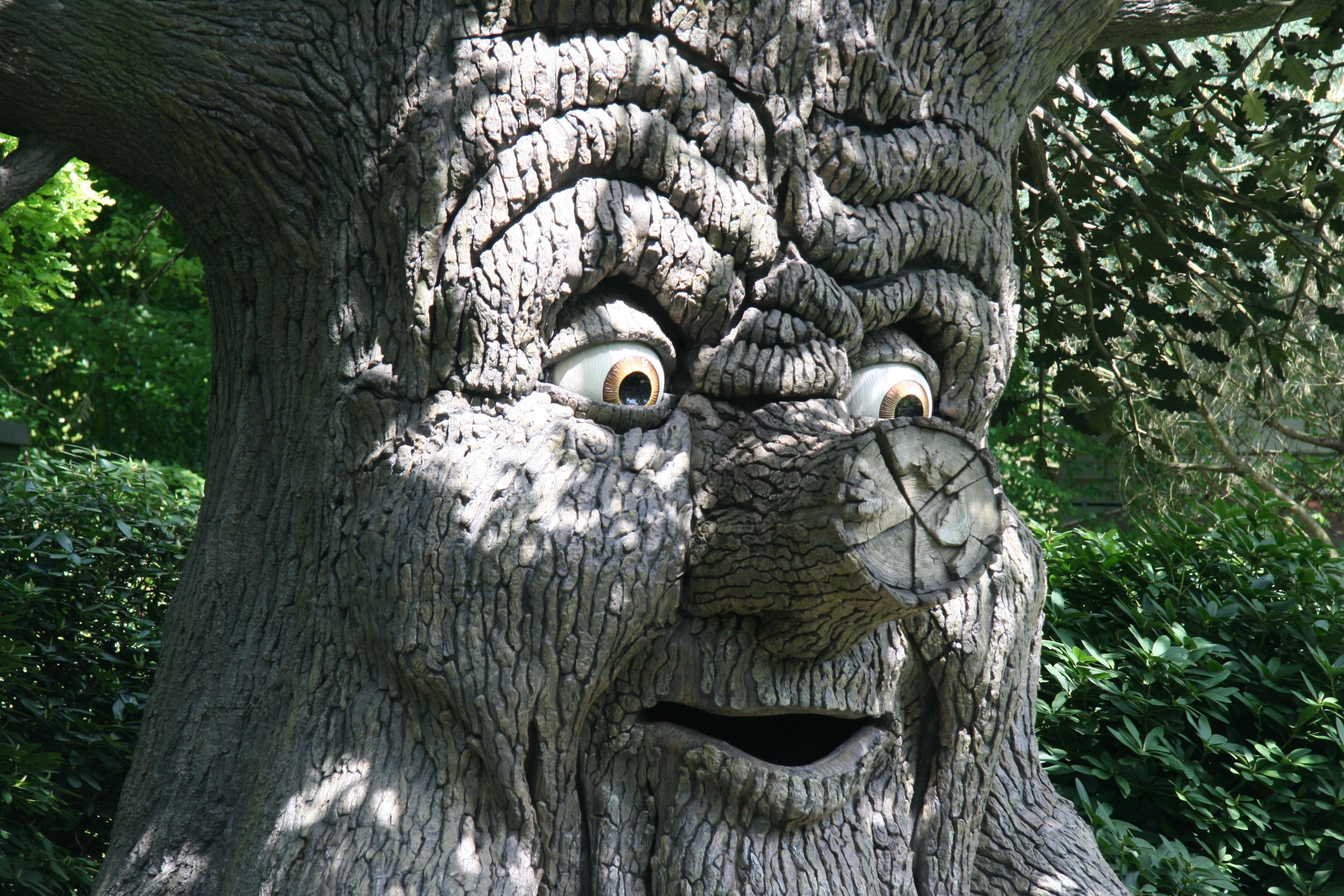 его сказочные деревья фото конфеты симметрично