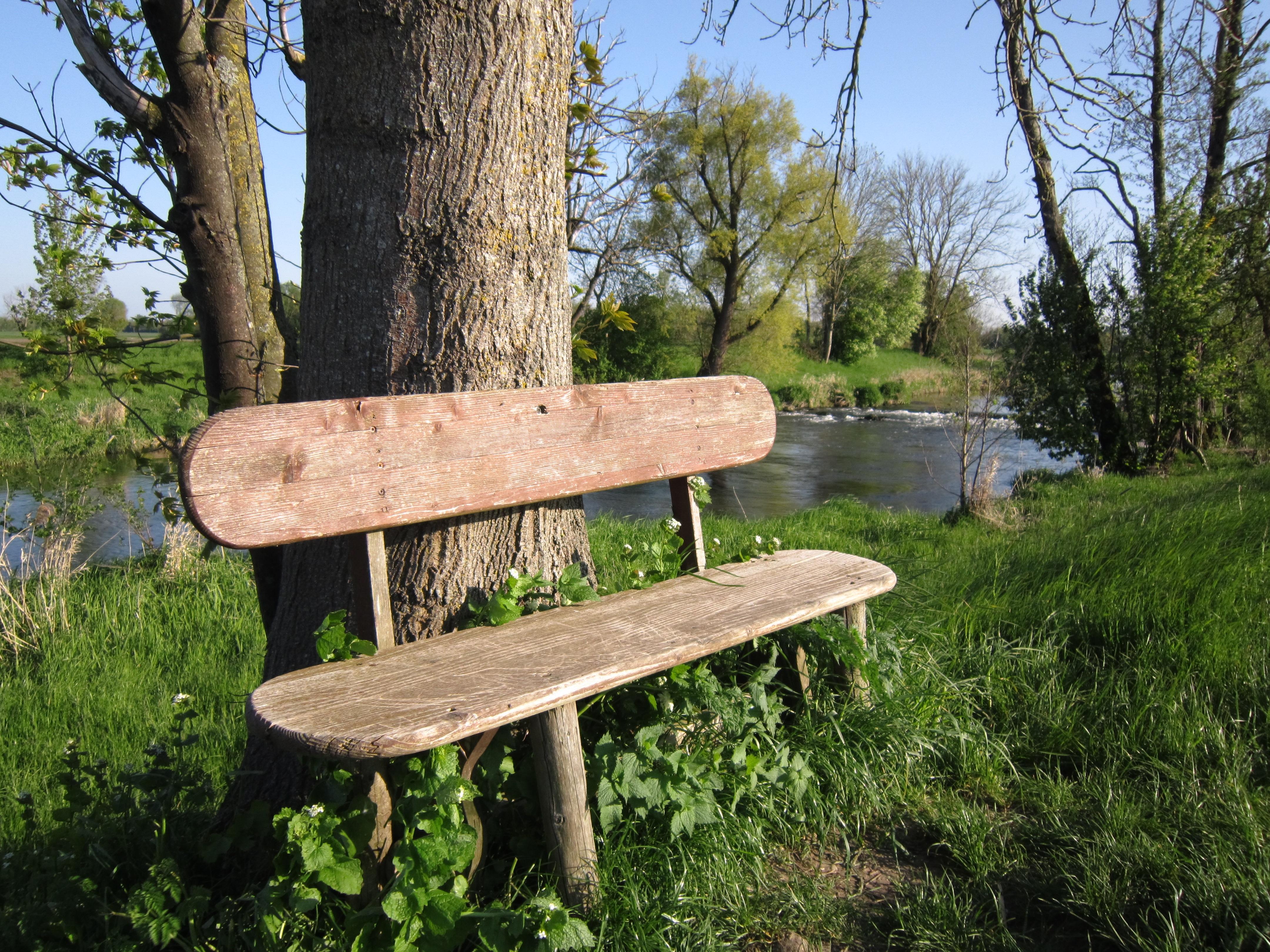 Tree Nature Wood Bench Seat Spring Park Backyard Romantic Rest Furniture  Garden Wooden Bench Bank Break