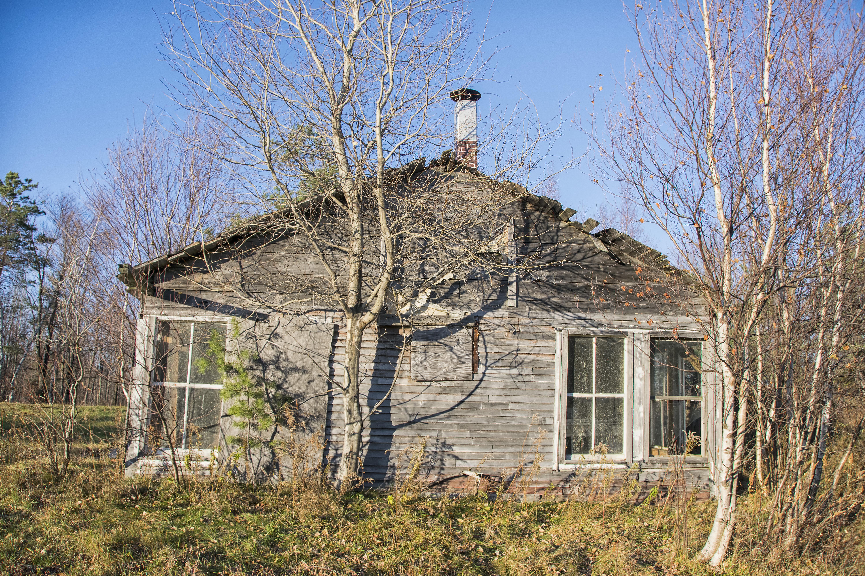 Fotos gratis : árbol, naturaleza, techo, edificio, granero ...