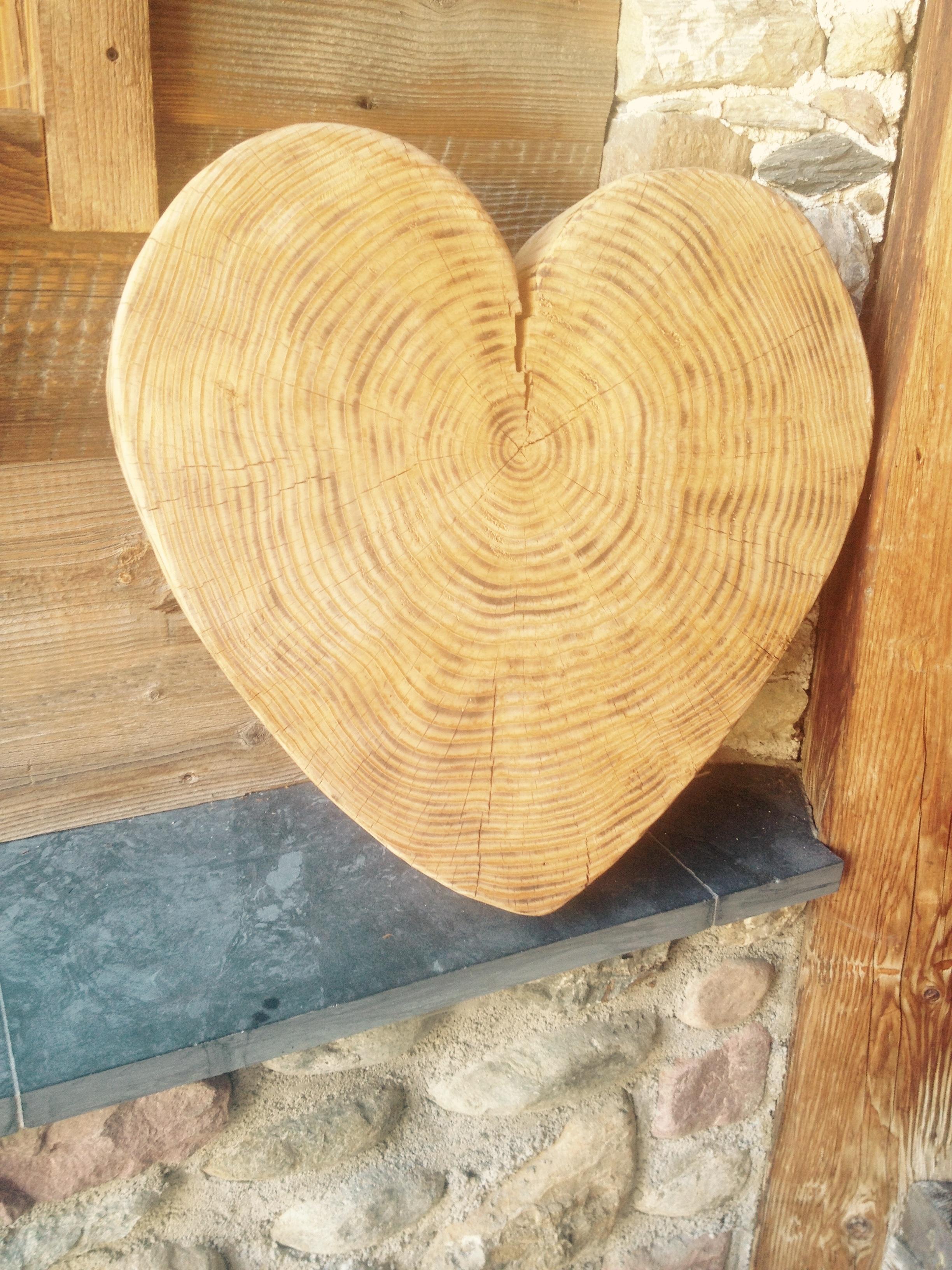 images gratuites arbre la nature tronc amour c ur. Black Bedroom Furniture Sets. Home Design Ideas