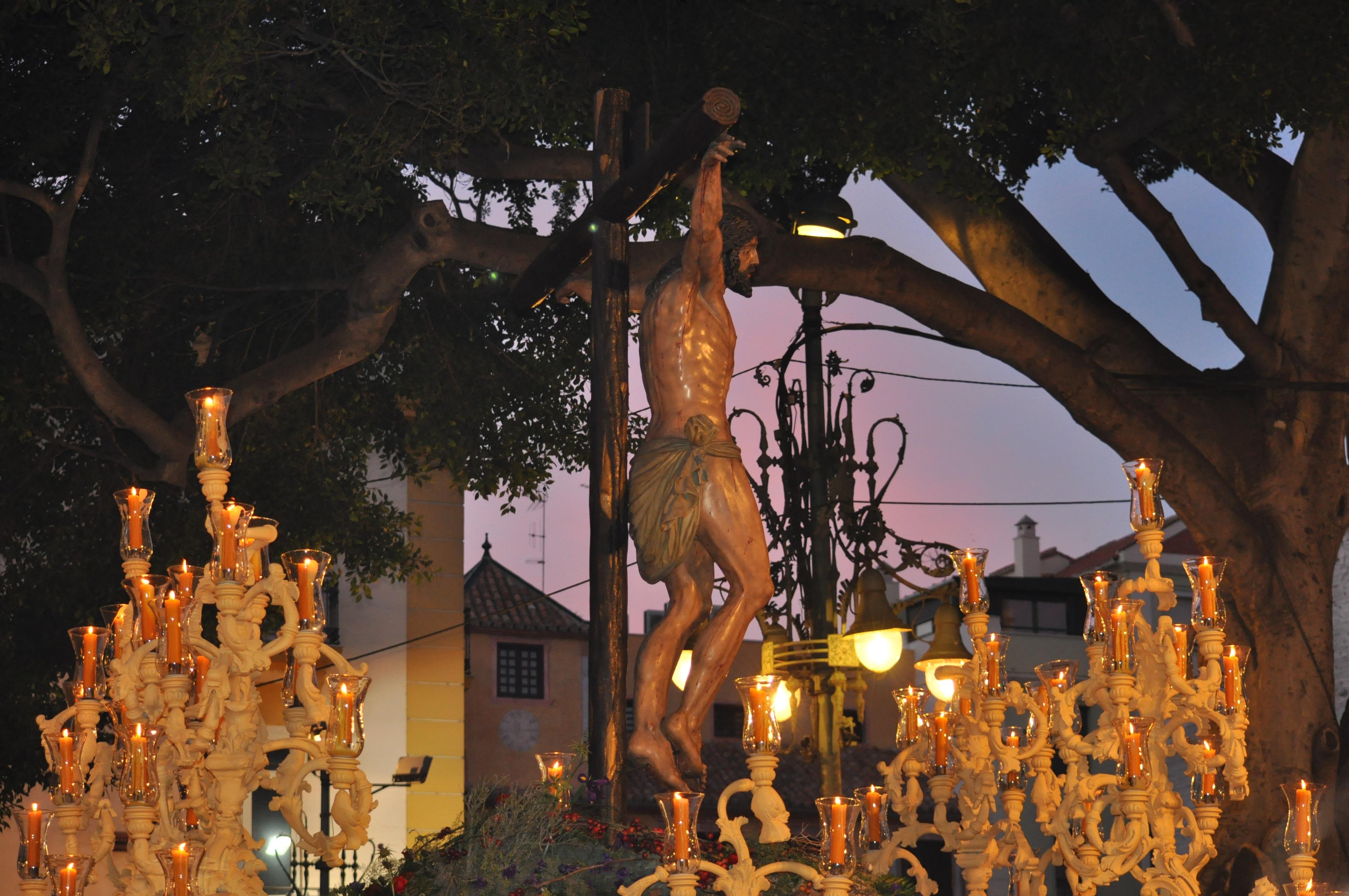 Images Gratuites Arbre Nuit Fleur Soir L Automne Decoration