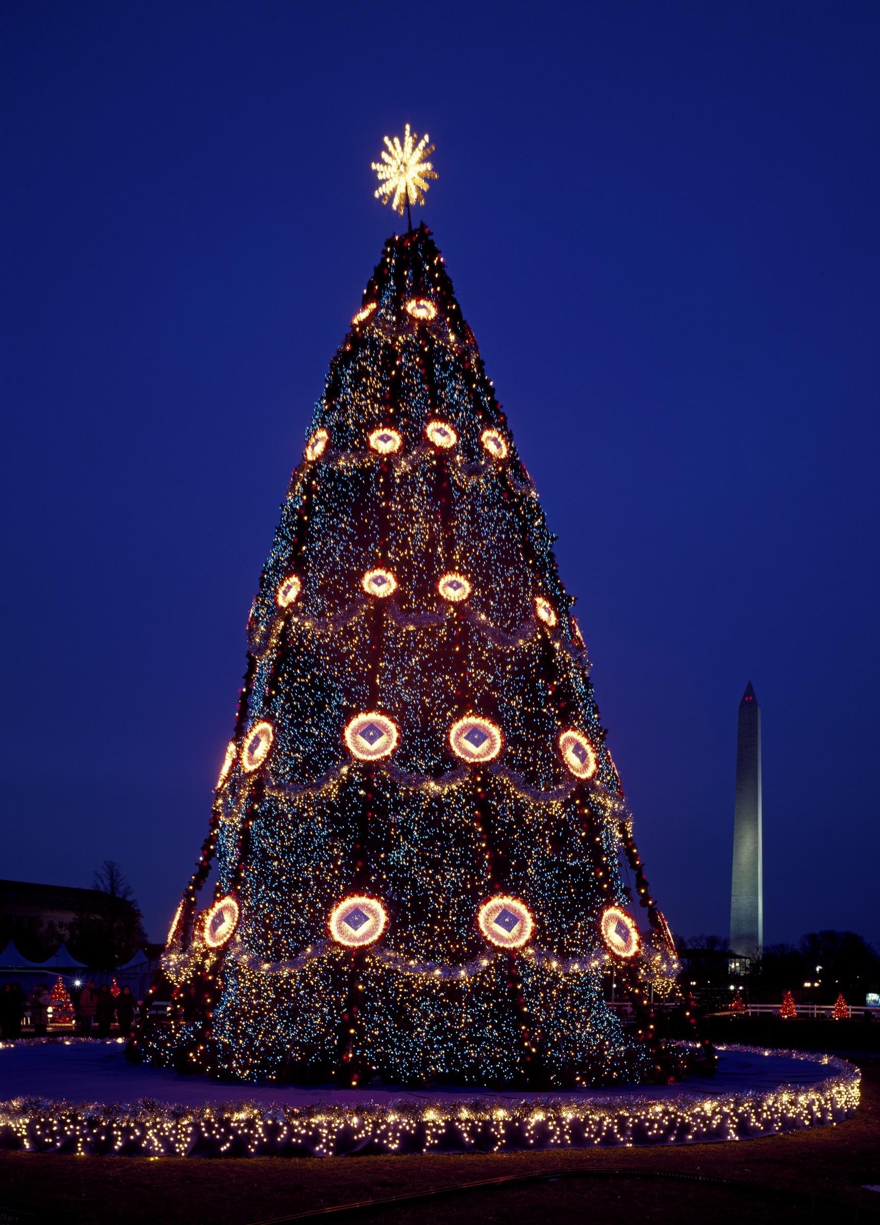 Tree Night Star Evening Tower Evergreen Holiday Landmark Christmas Festive Washington Decoration Lights