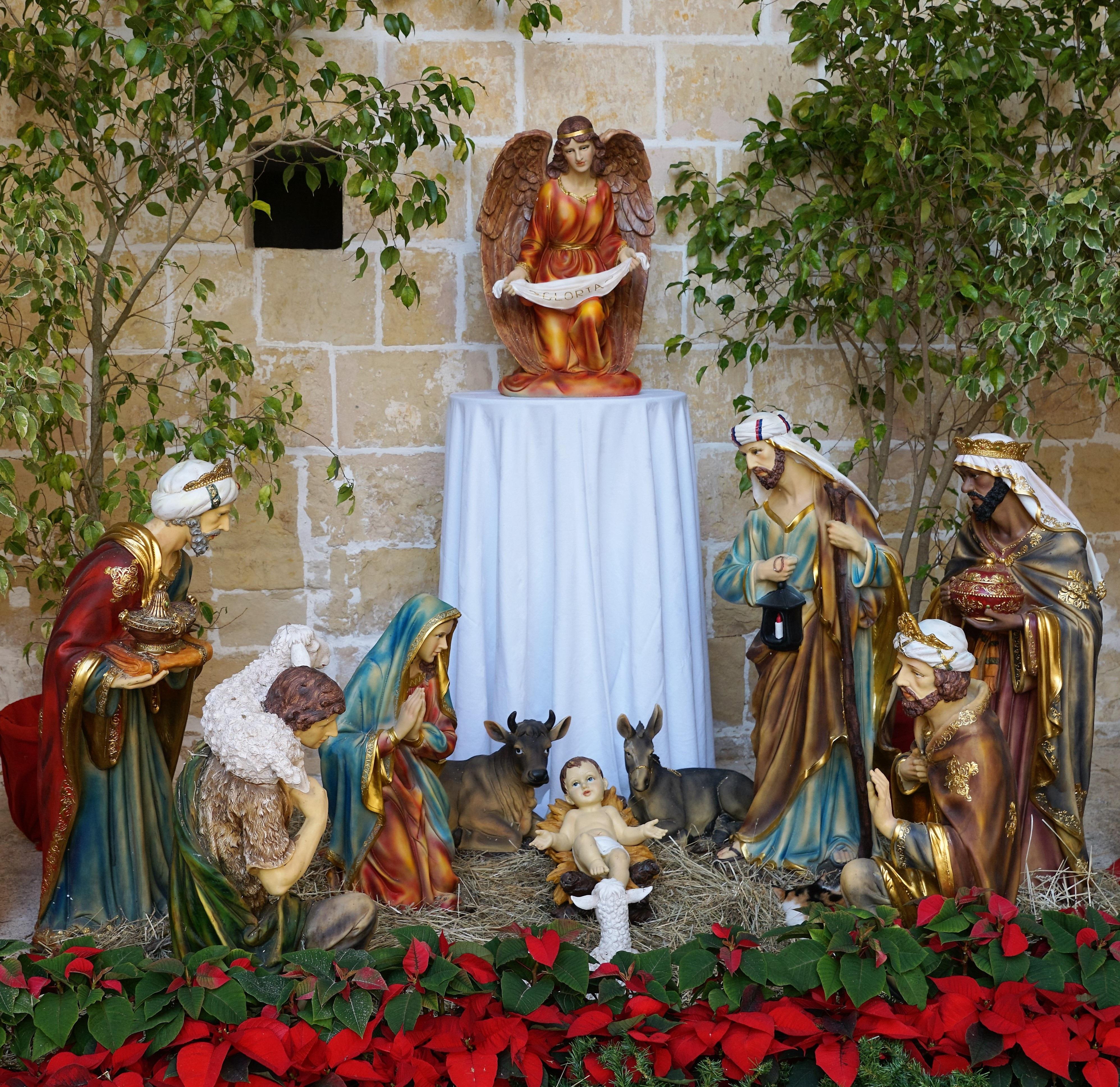 Fotos gratis : árbol, gente, regalo, verde, rojo, padre, niño, bebé ...