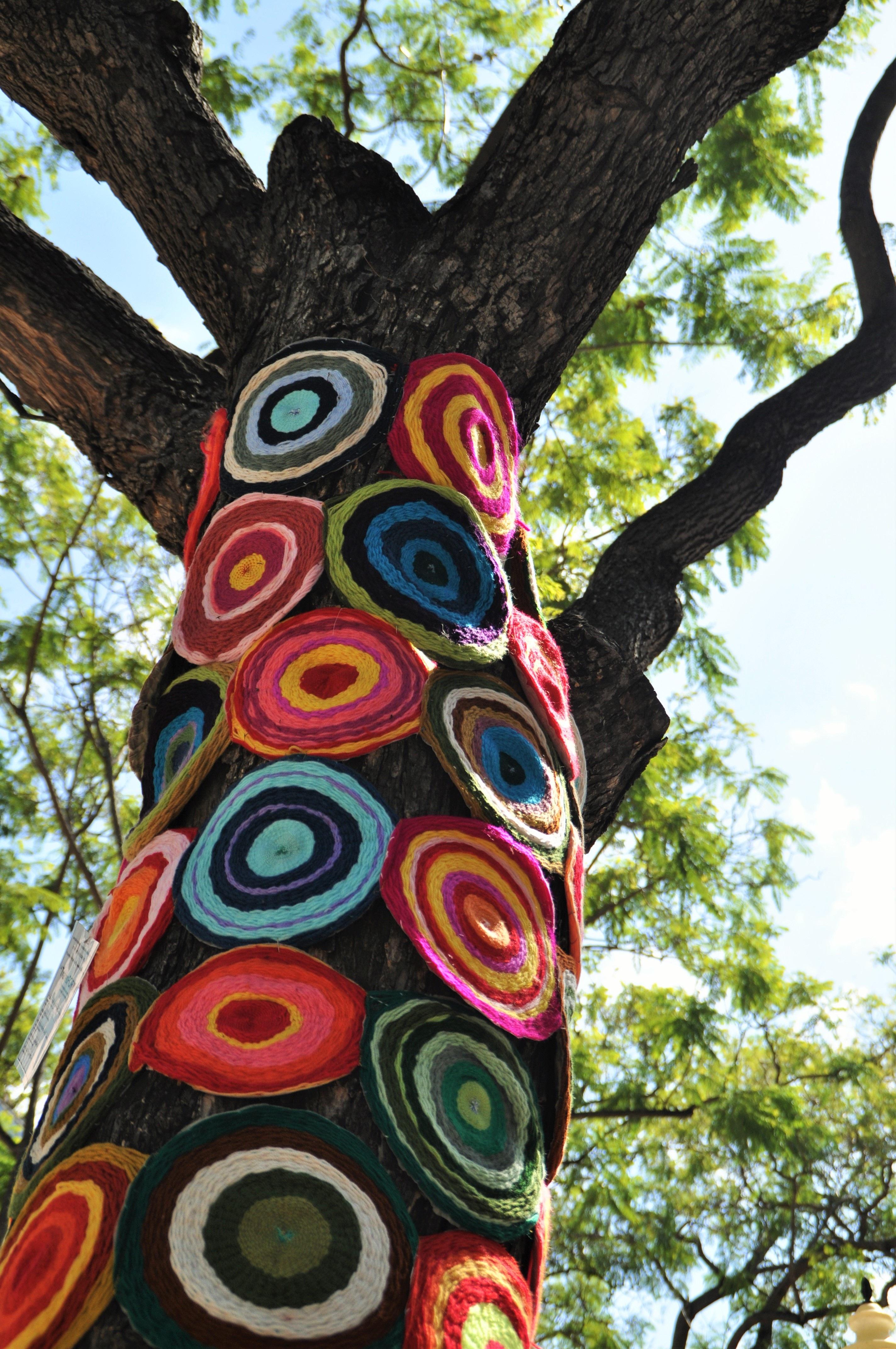 Kostenlose foto : Baum, Pflanze, Blume, bunt, Hausgemacht, Wolle ...
