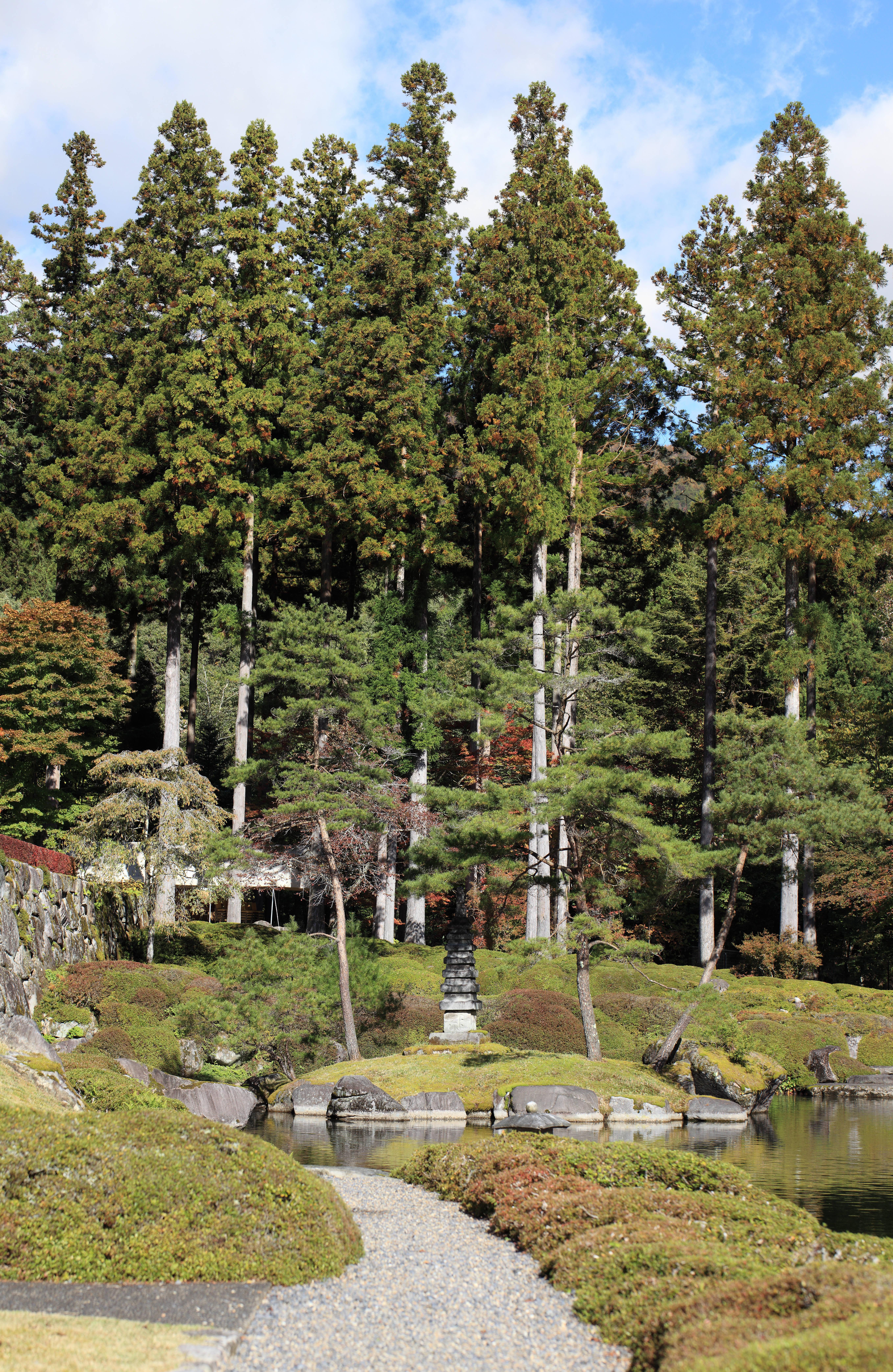 Free Images : tree, panorama, pond, high, autumn, botany, garden ...