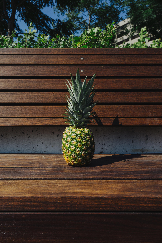 Fotos gratis rbol madera banco fruta hoja flor for Arboles para plantar en verano
