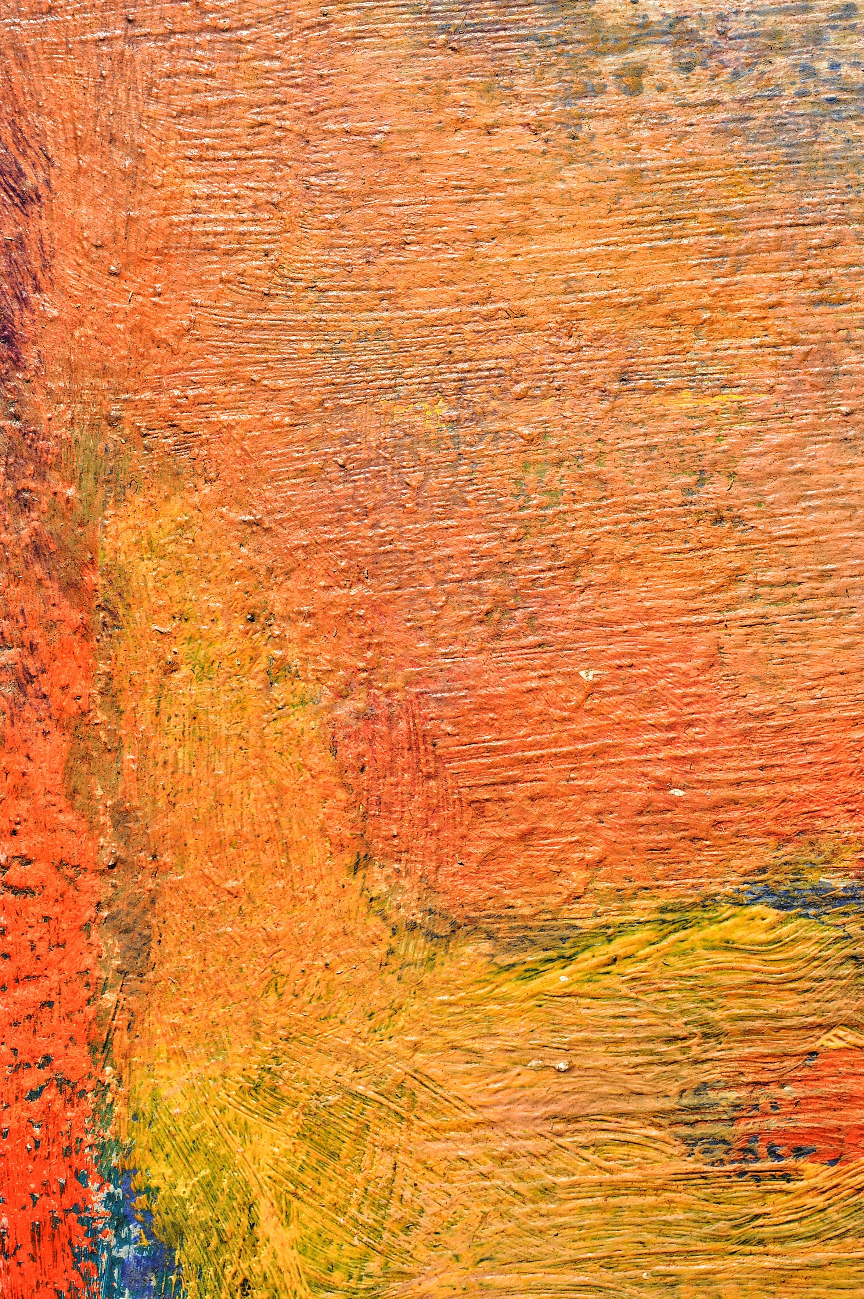 Images Gratuites Arbre Prairie Texture Feuille Mur Couleur