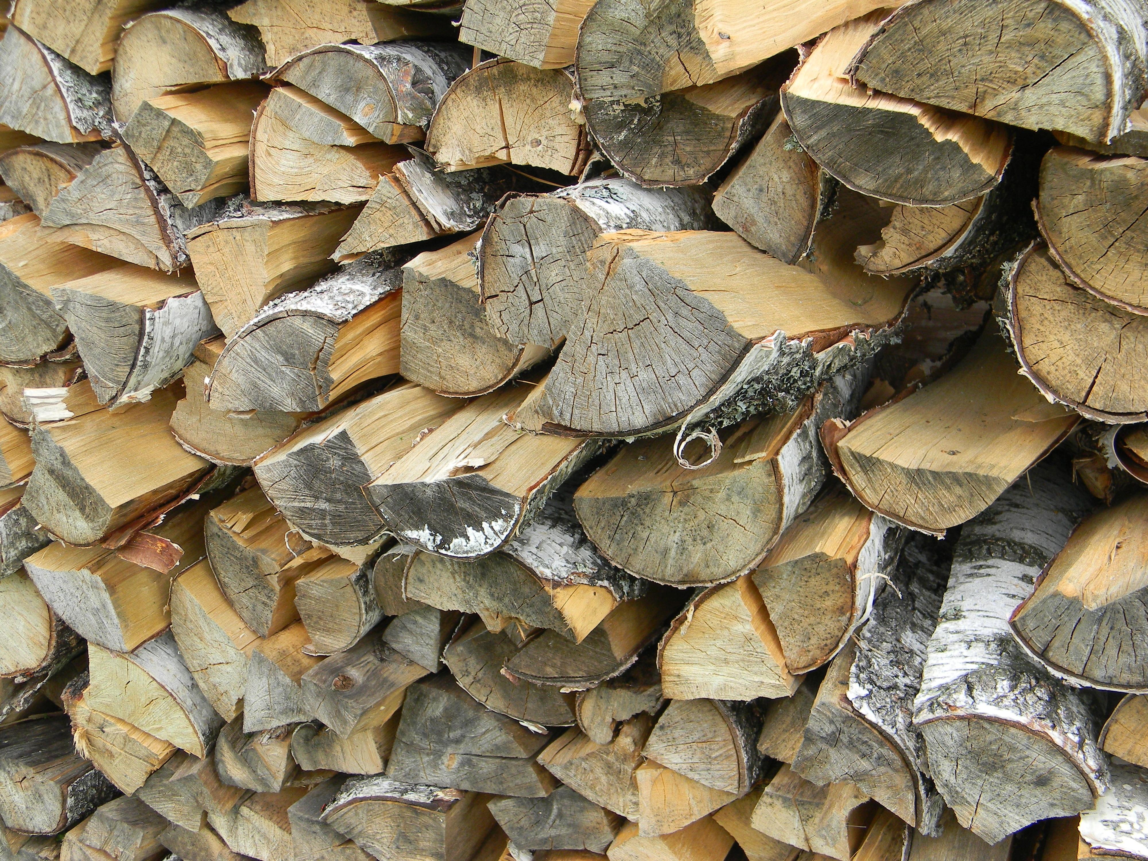 современных пилящий дрова картинки авторучки или