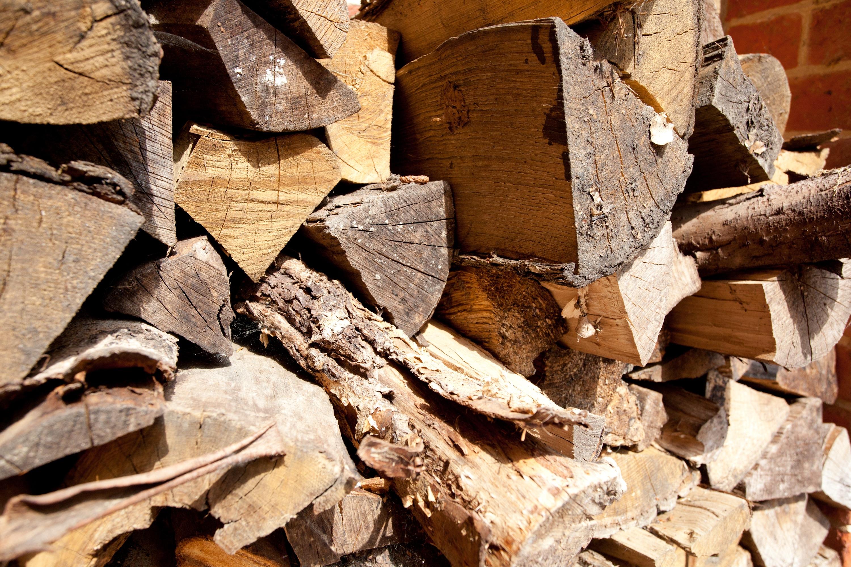 Logs to lumber bosch gws 2000