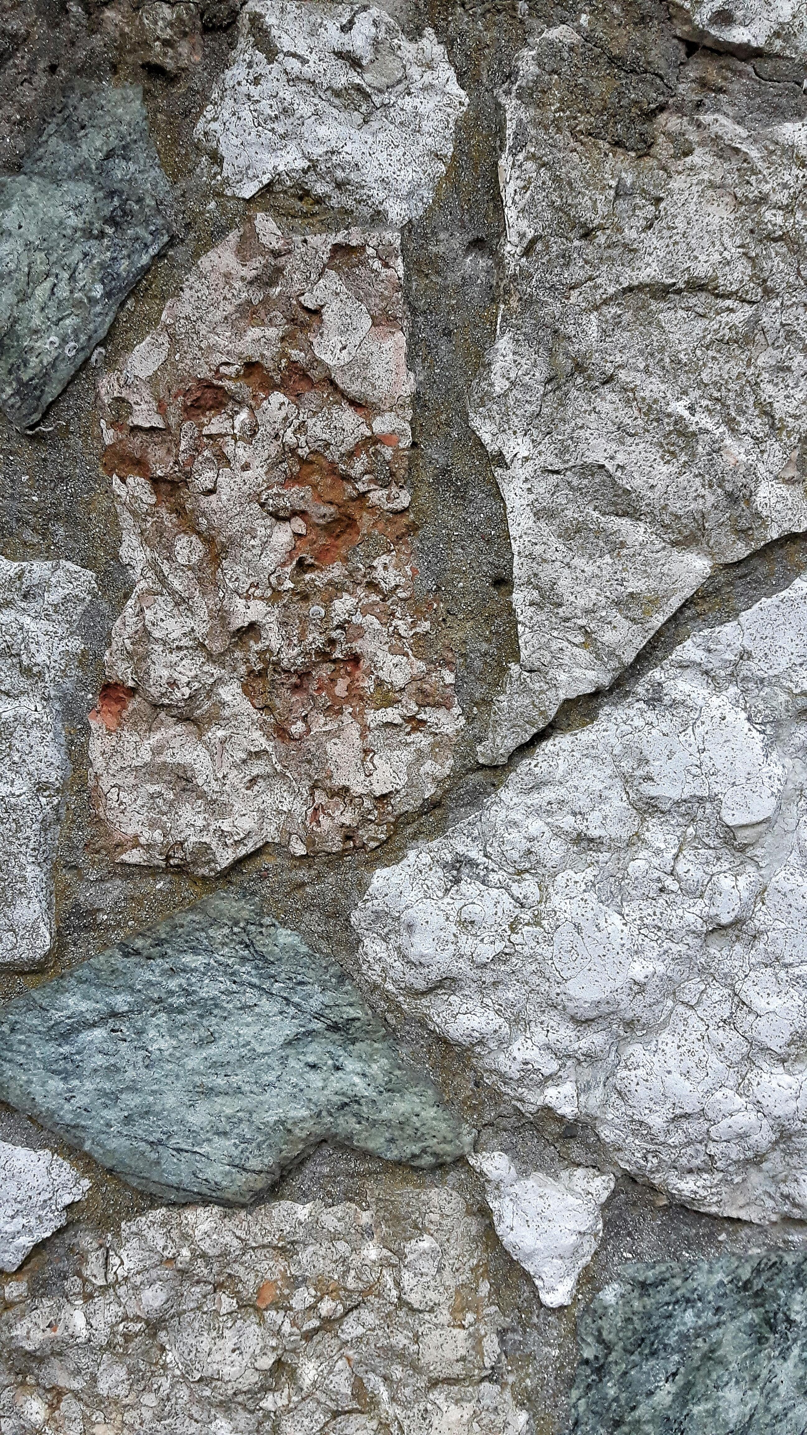 Images Gratuites Arbre Roche Bois Texture Tronc Formation