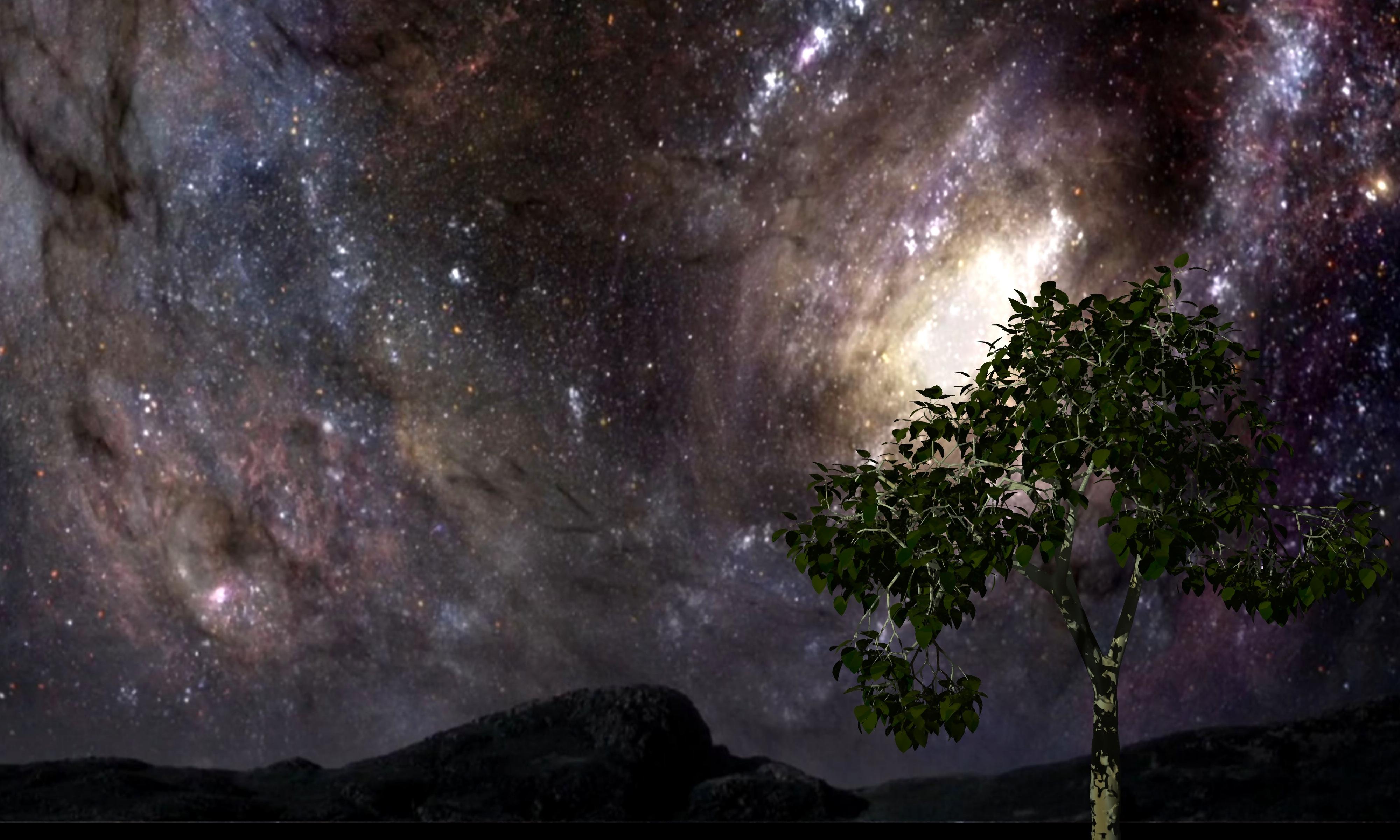 Fotos gratis rbol cielo v a l ctea atm sfera for Immagini universo gratis