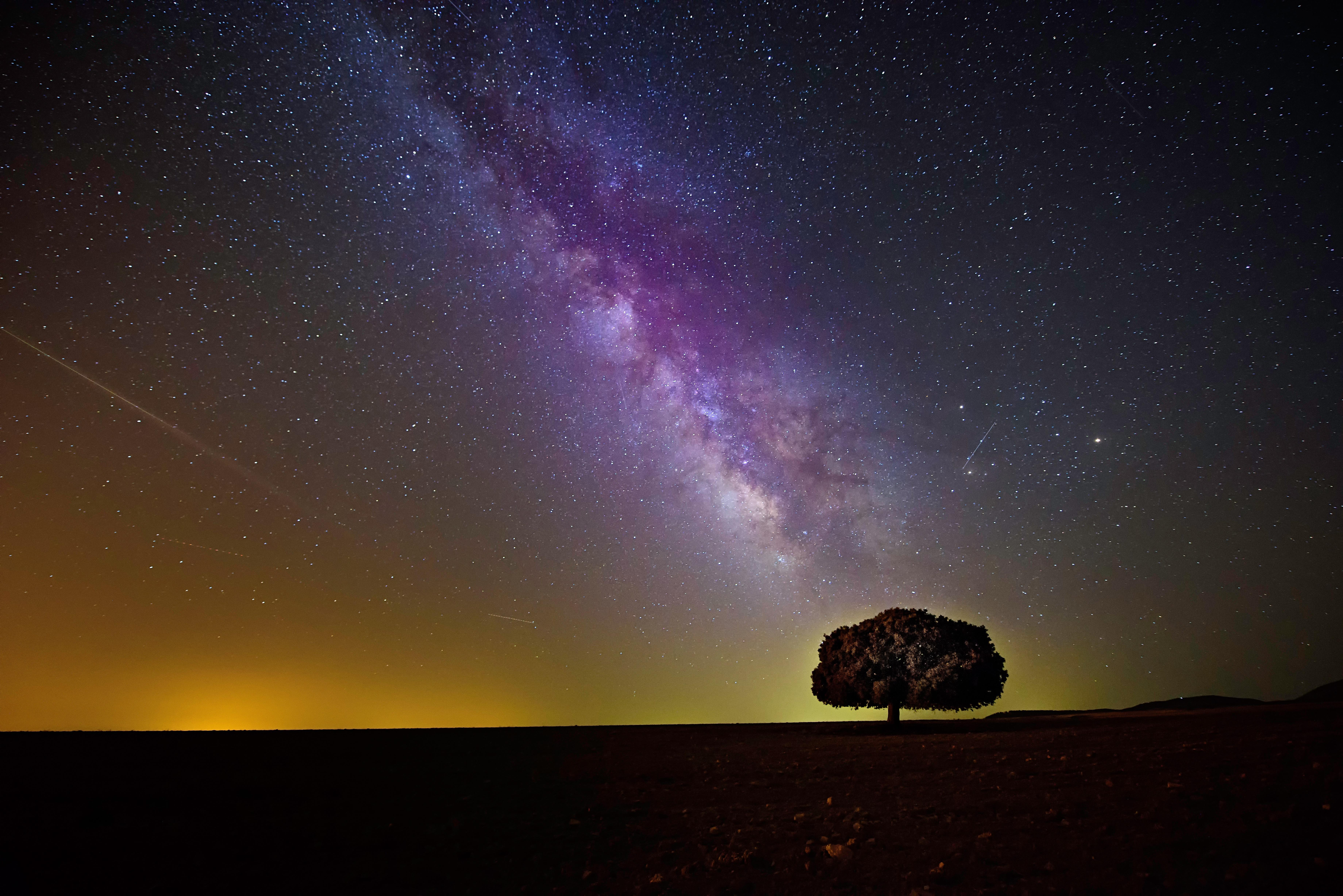 图片素材 树 天空 晚 大气层 流星 星系 夜空 外太空 天文学