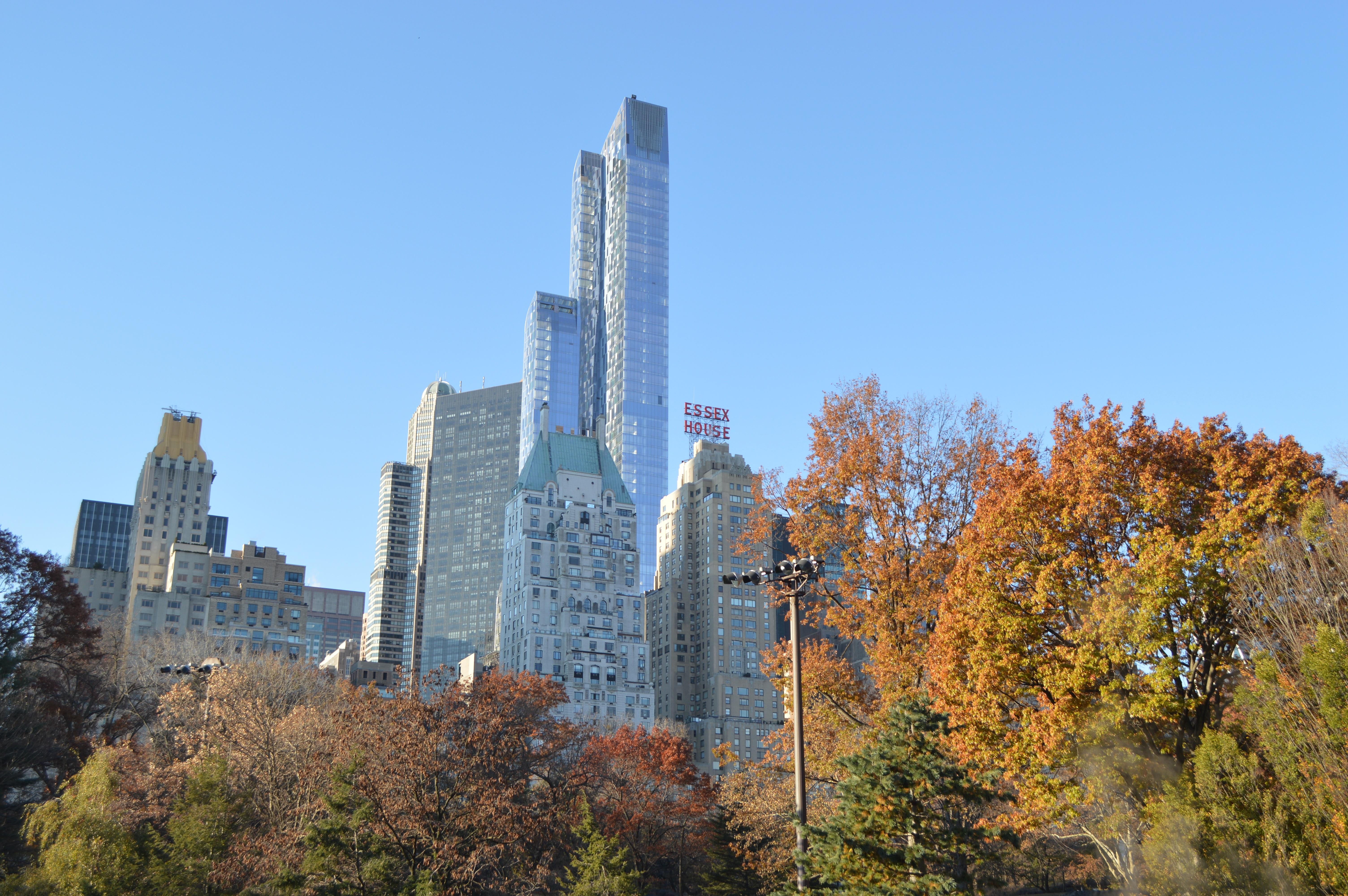 rbol horizonte ciudad rascacielos nueva york paisaje urbano centro de la ciudad torre otoo parque punto