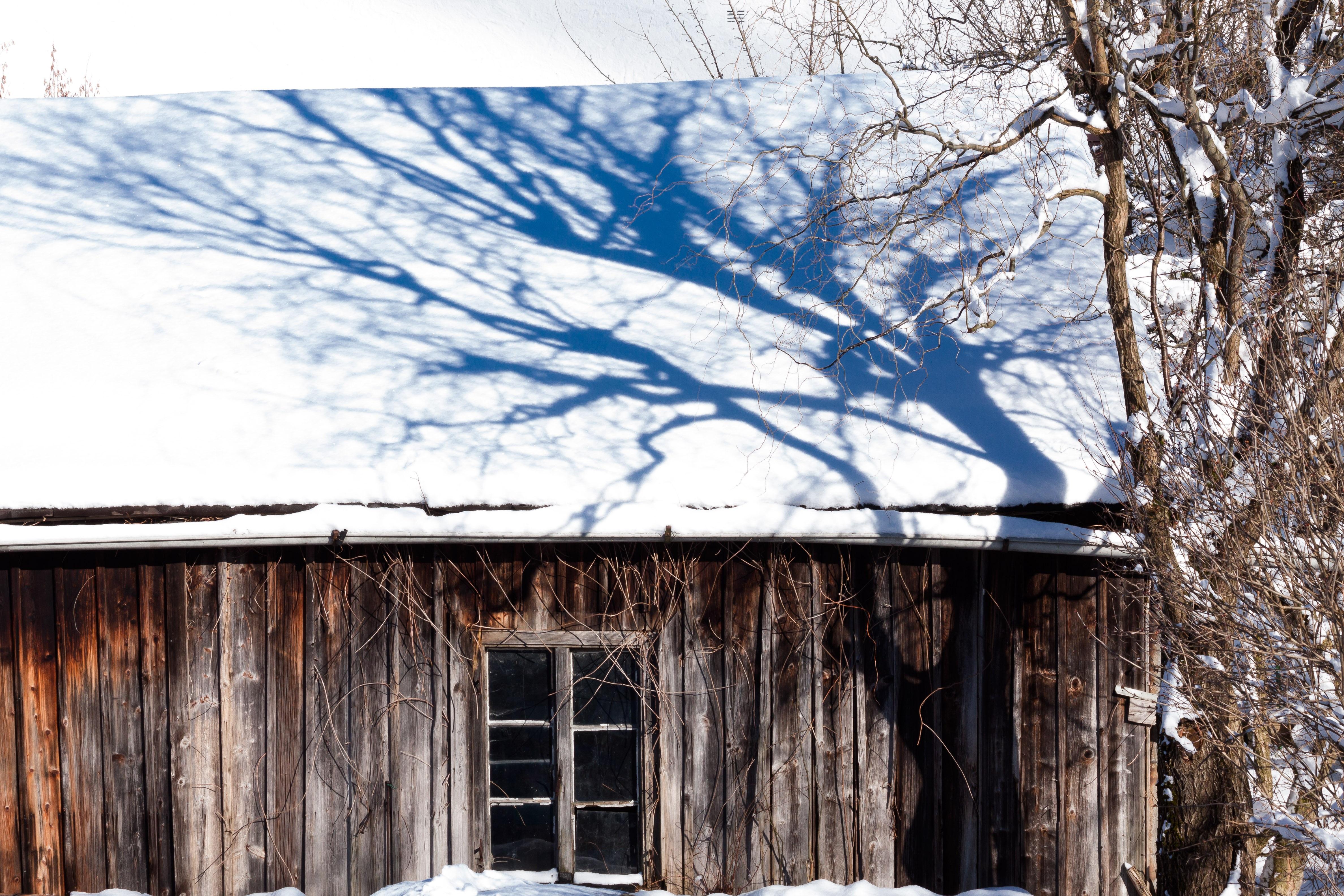 Kostenlose foto : Baum, Schnee, Winter, die Architektur, Holz, Haus ...