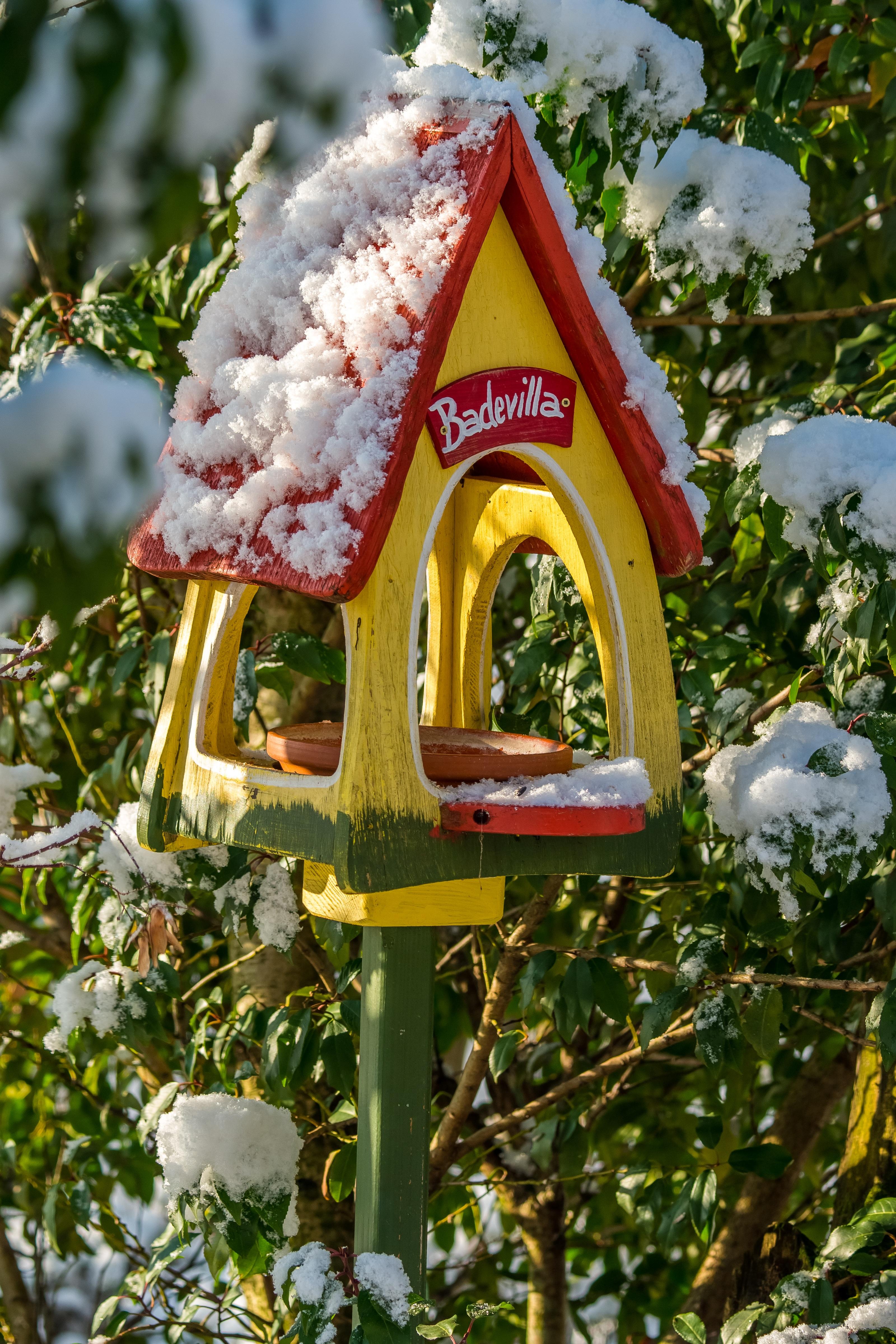 reviews garden walmart gro com feeder miracle product