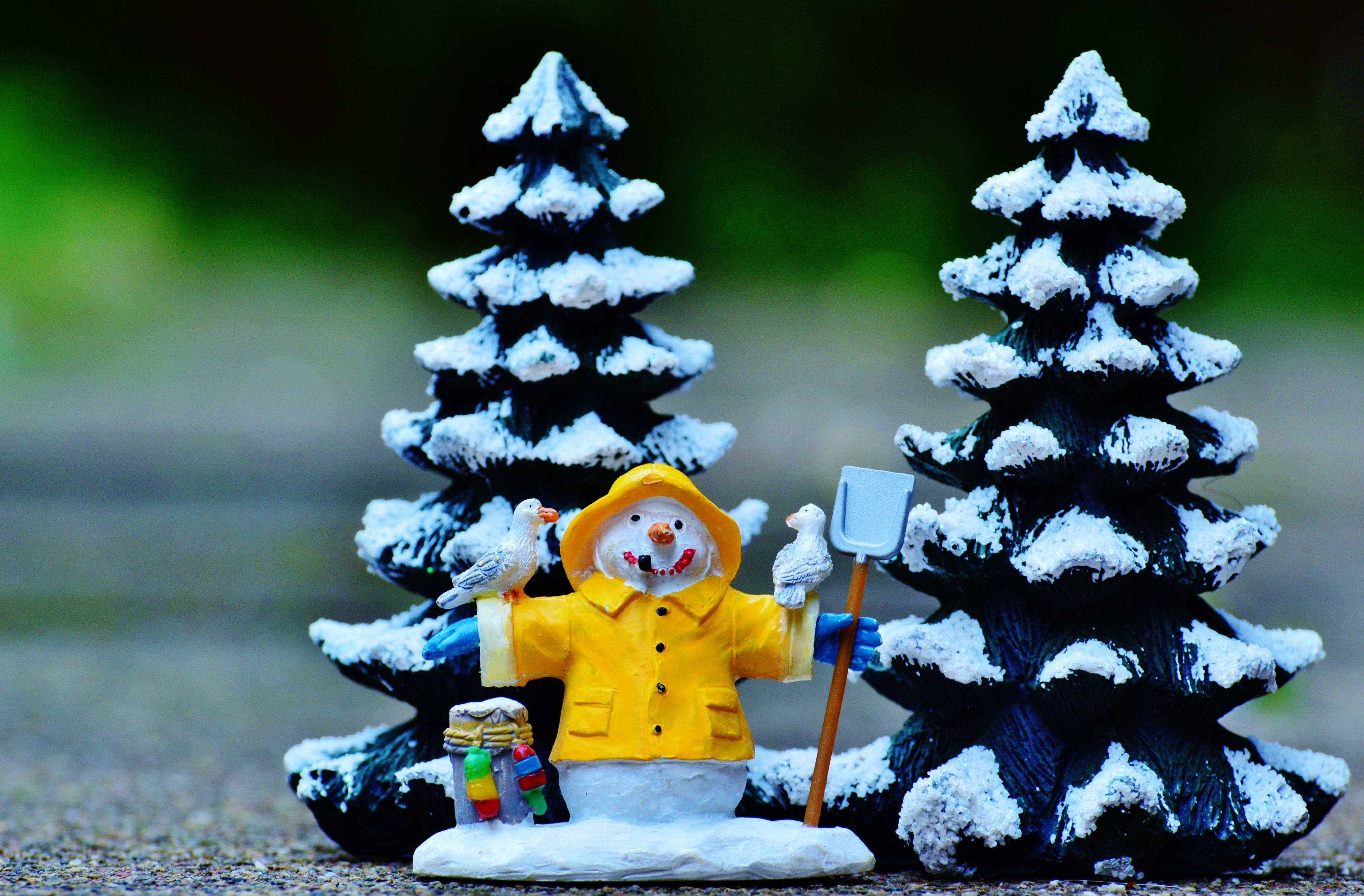 Gratis Afbeeldingen Boom Winter Schattig Kerstmis Spar