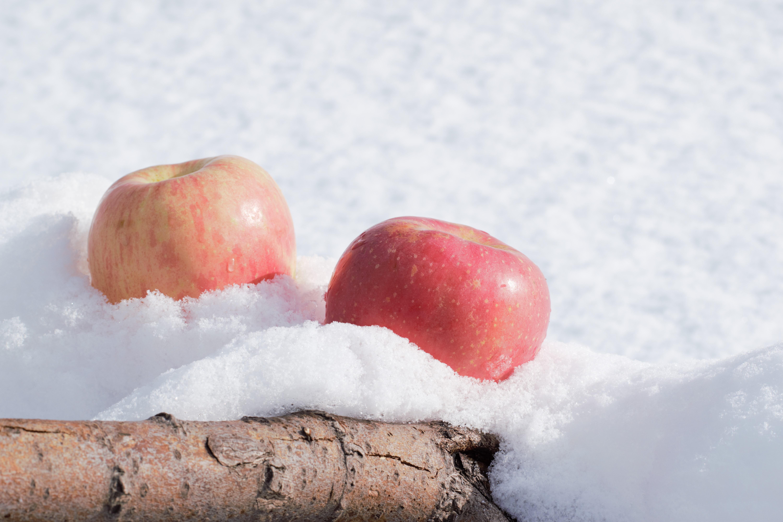 настоящее картинка анимация яблоки на снегу этой