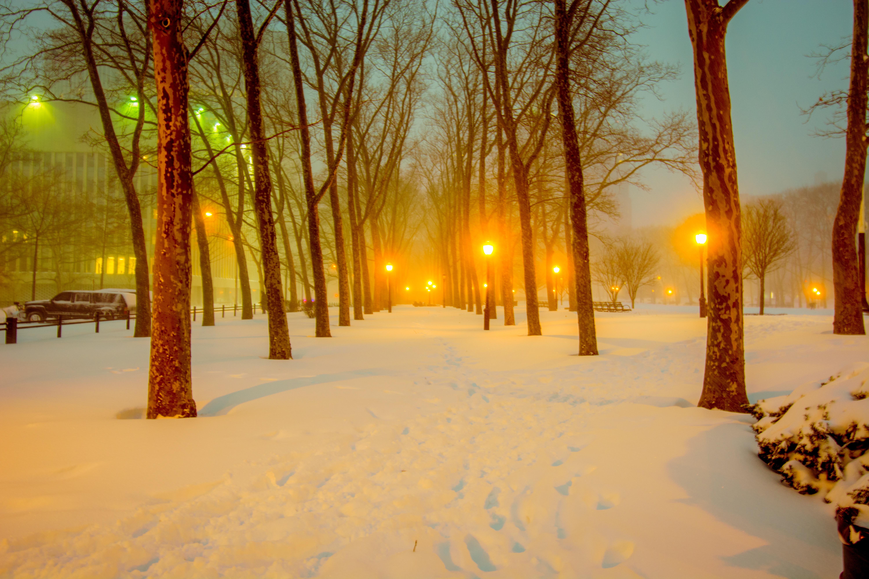 картинки солнечной погоды зимой
