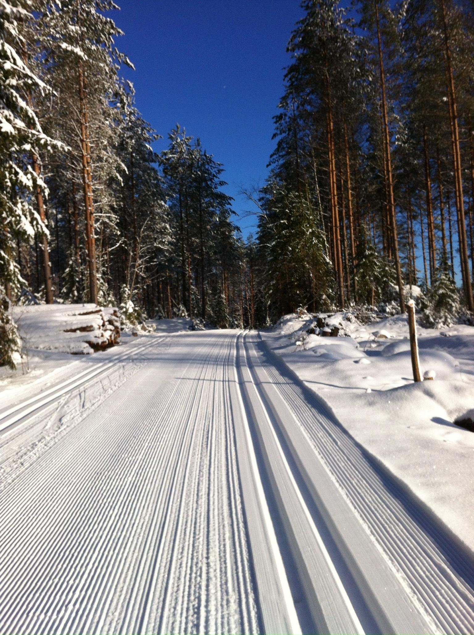 Картинки снега и лыж