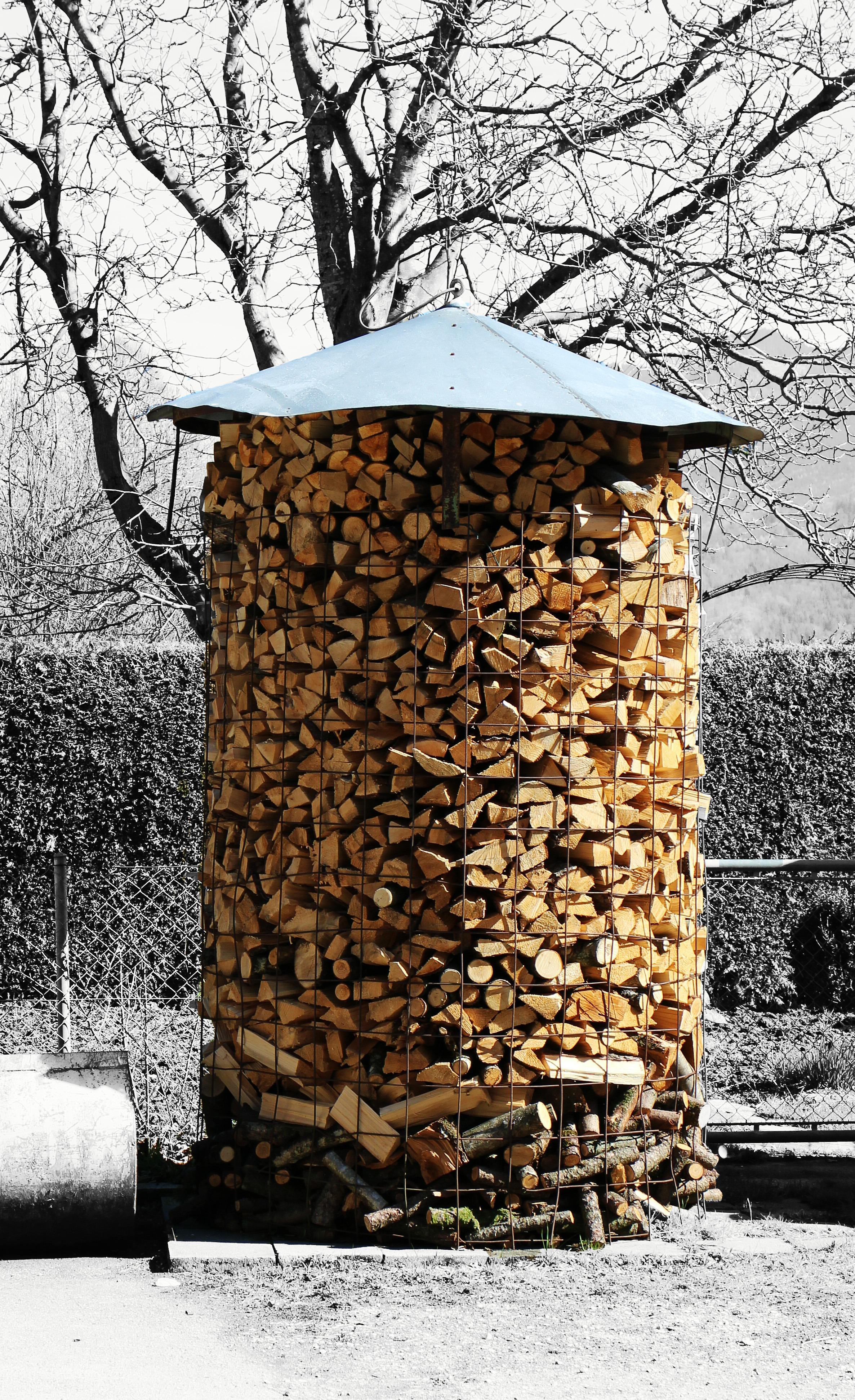 Free images tree snow winter wood autumn firewood