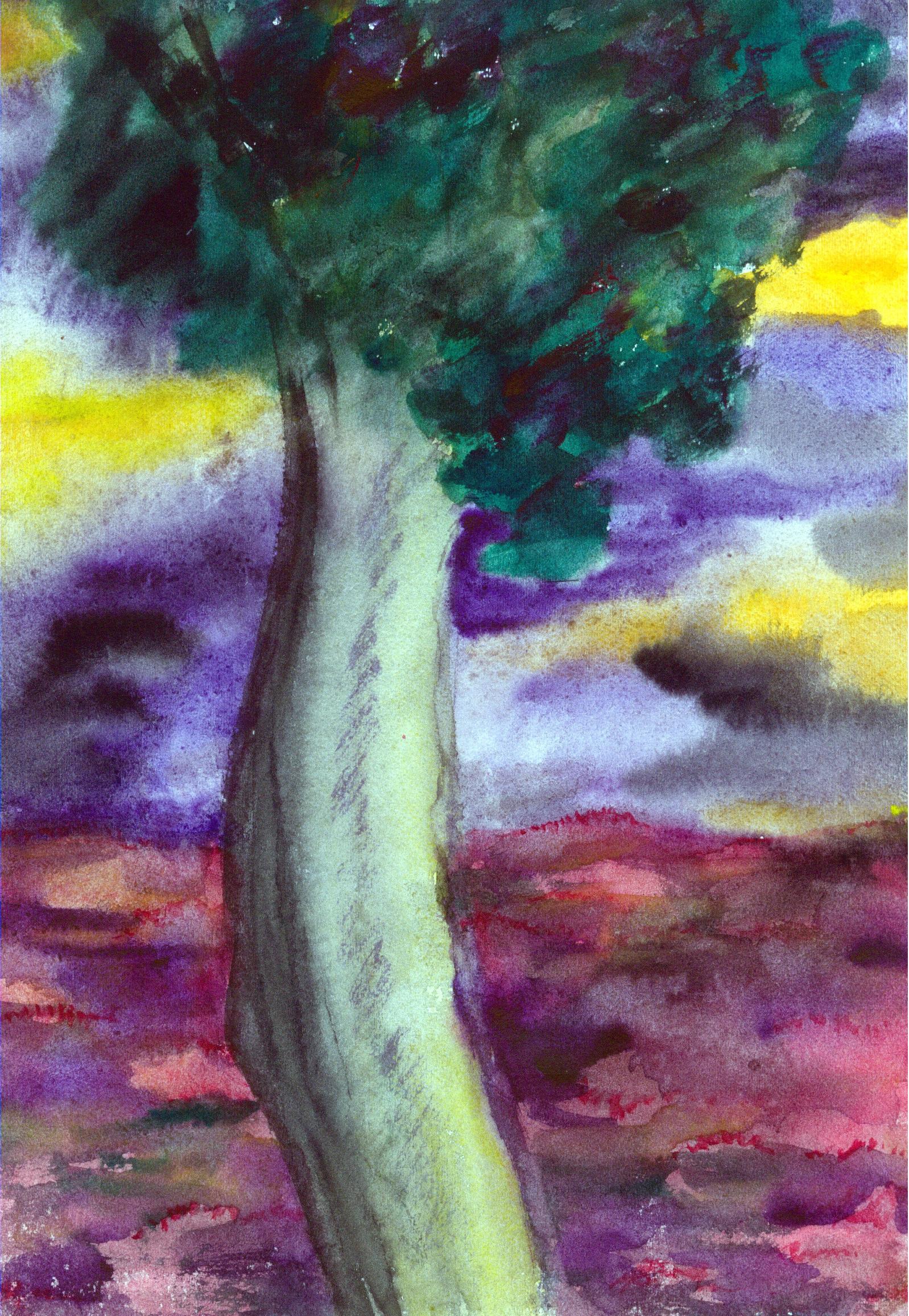 Banco de imagens rvore textura flor folhagem cor for Pintura color albero