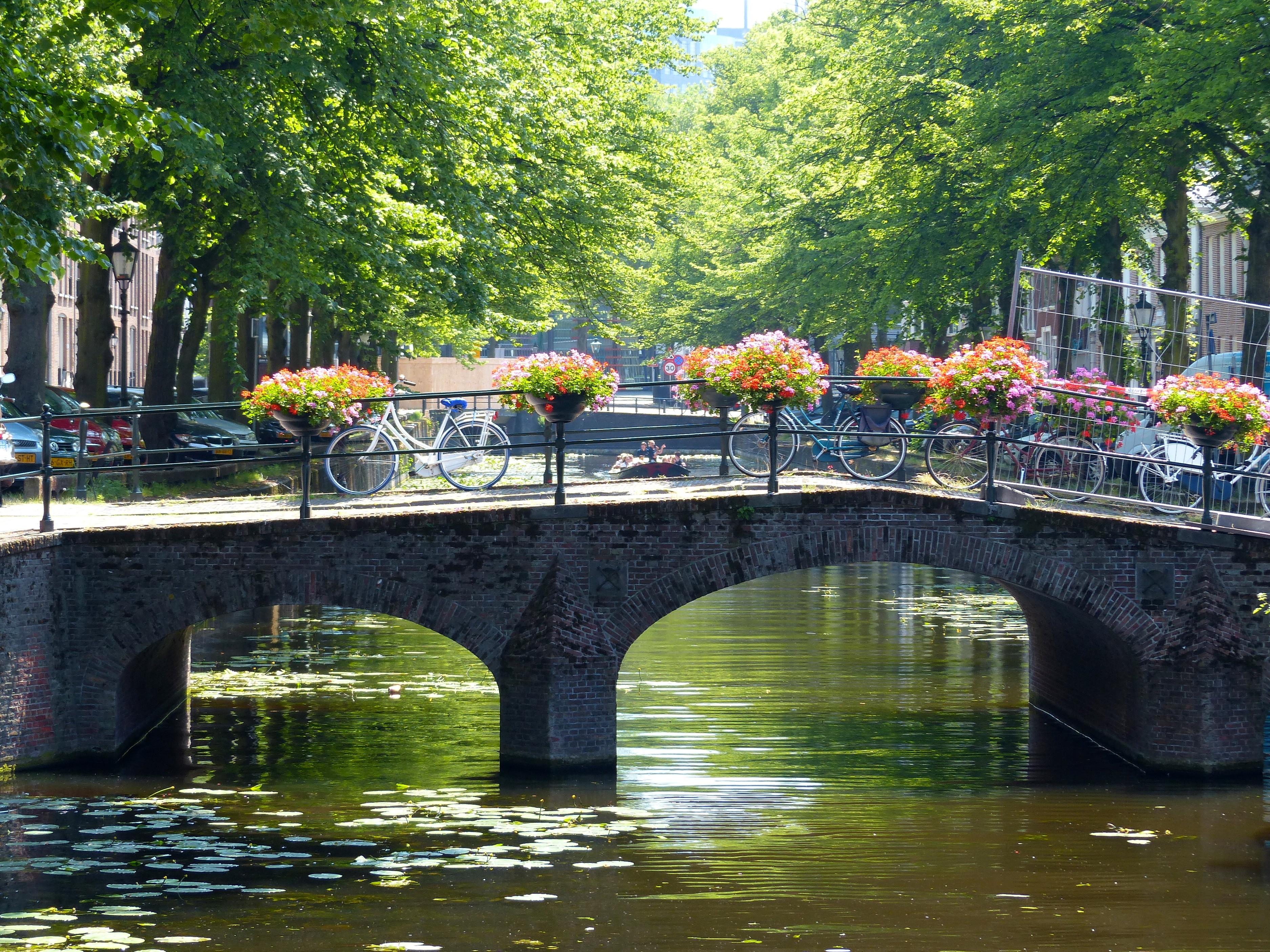 Fotos gratis rbol agua puente flor bicicleta r o for Estanque reflectante