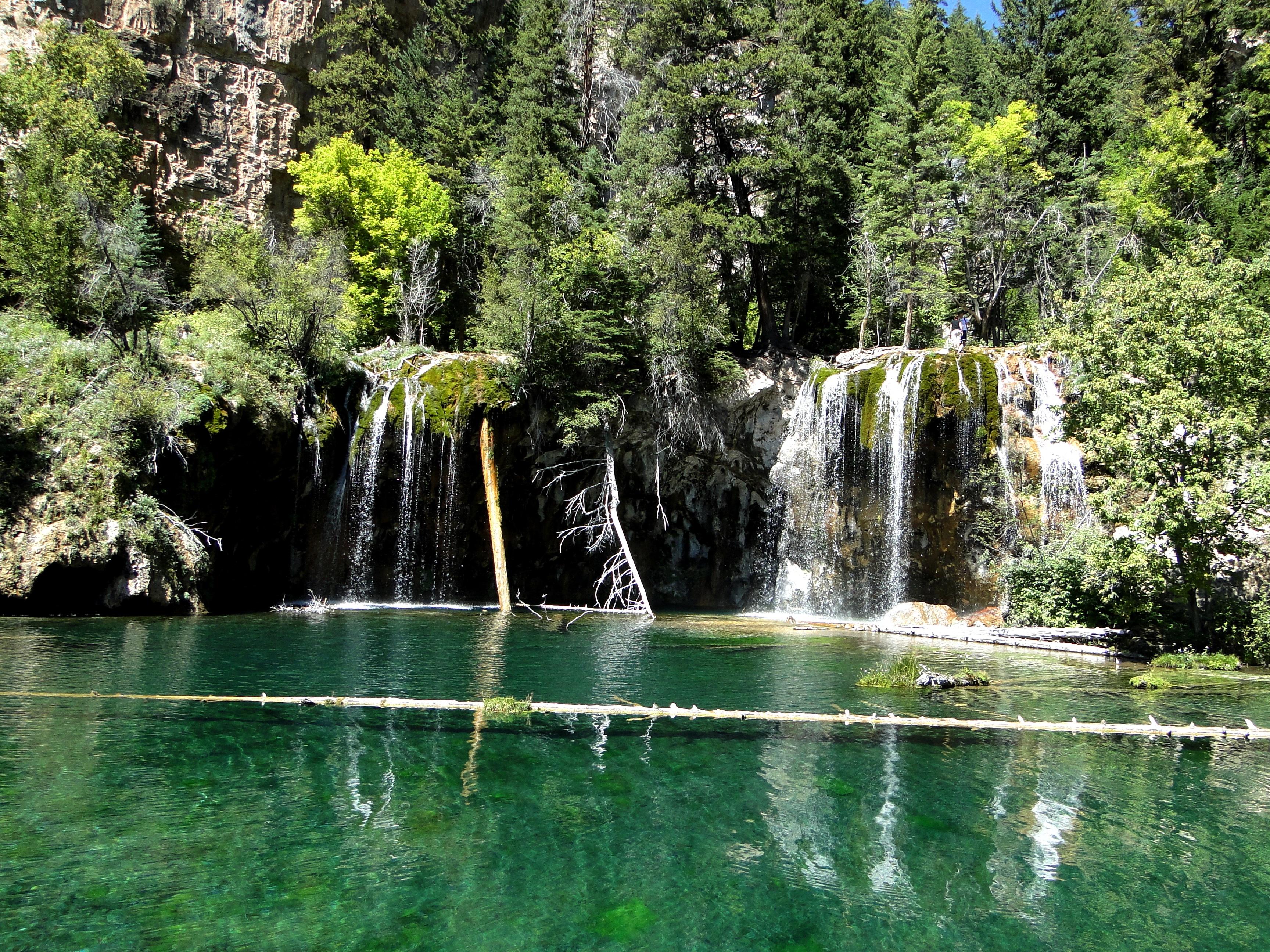 Waterval In Tuin : Gratis afbeeldingen : boom water bos waterval meer vijver