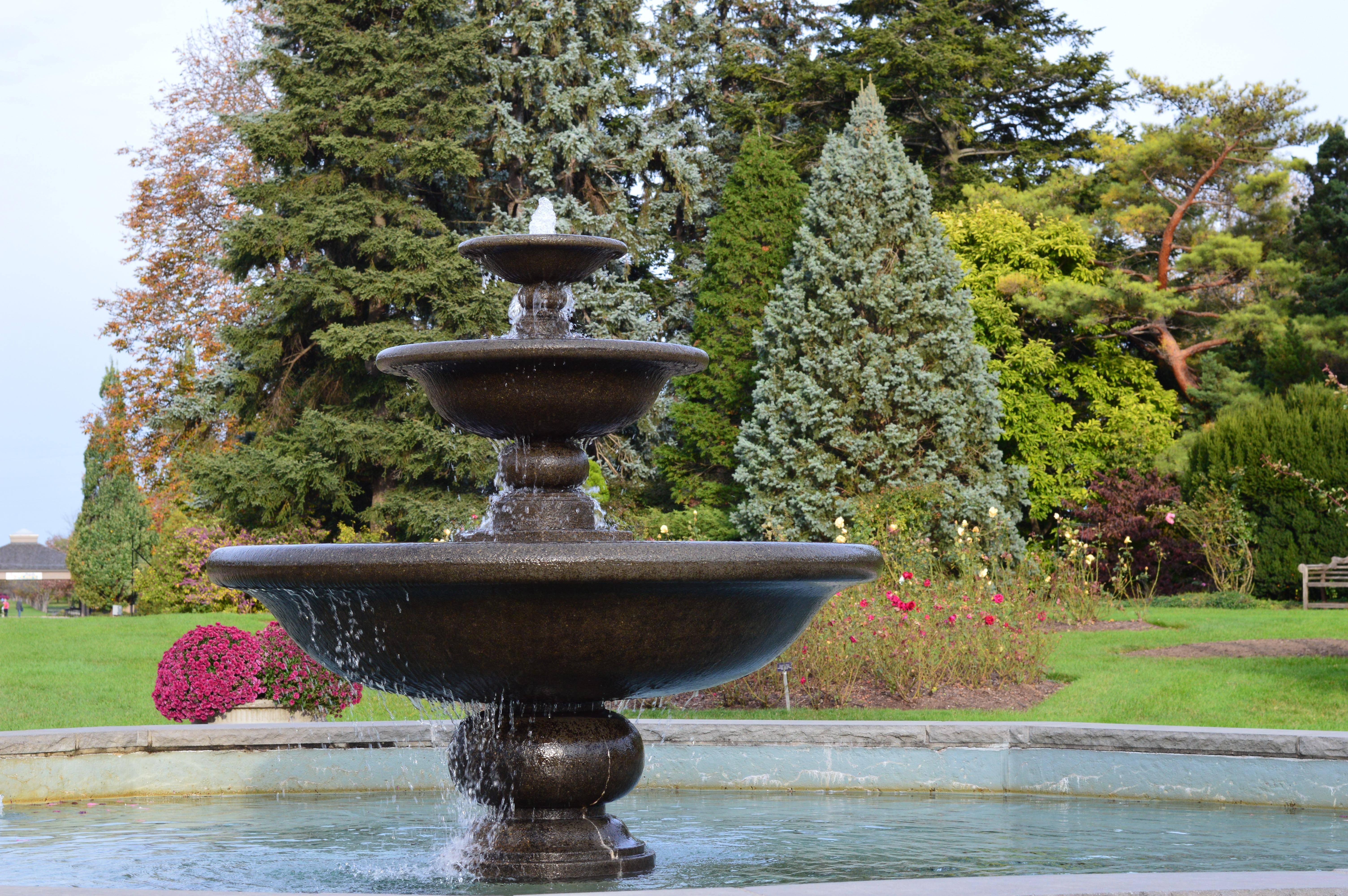 вроде расчистили парковый фонтан фото рисунок анализ группы