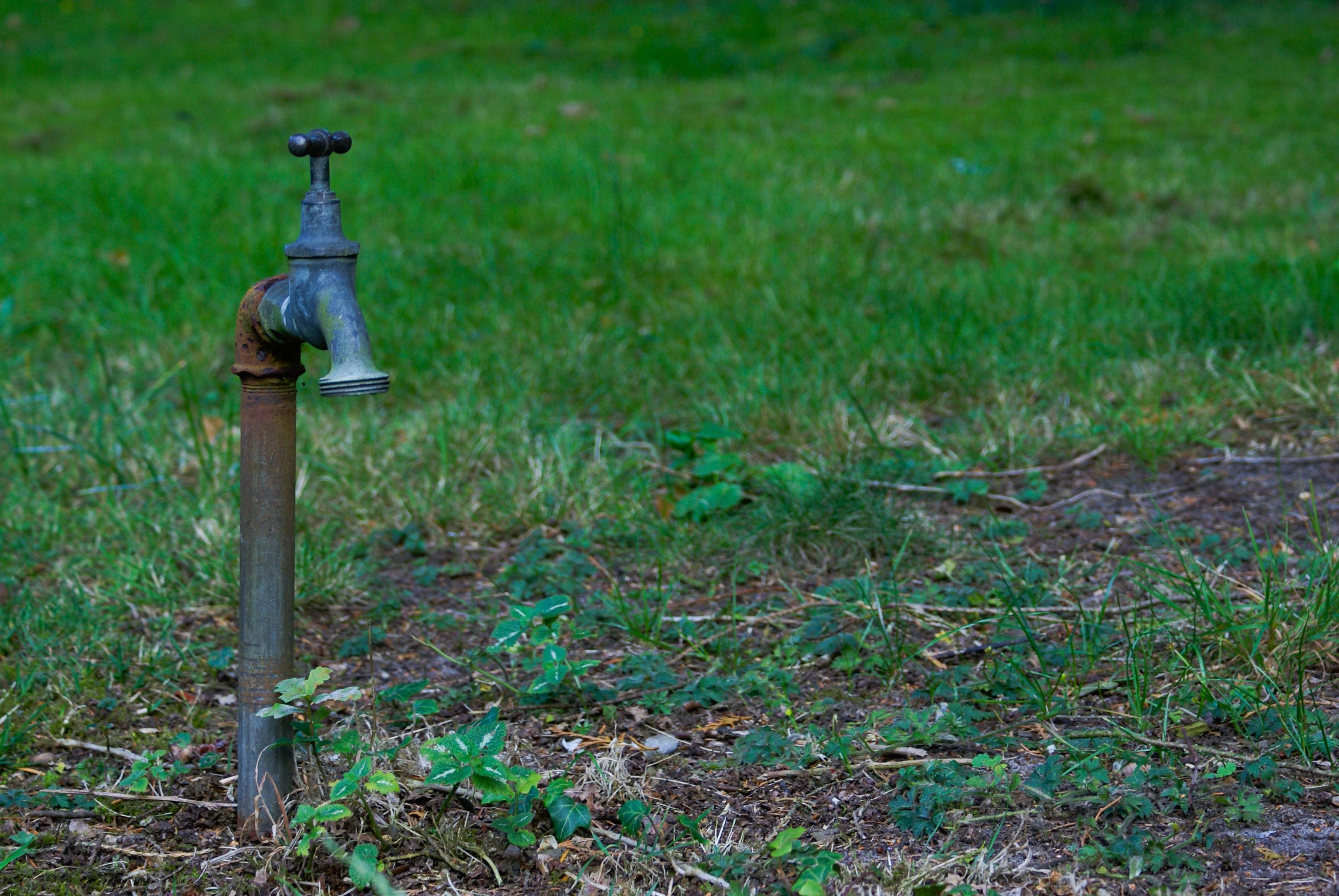 Belle robinet de jardin sabakunohana for Brumisateur de jardin castorama