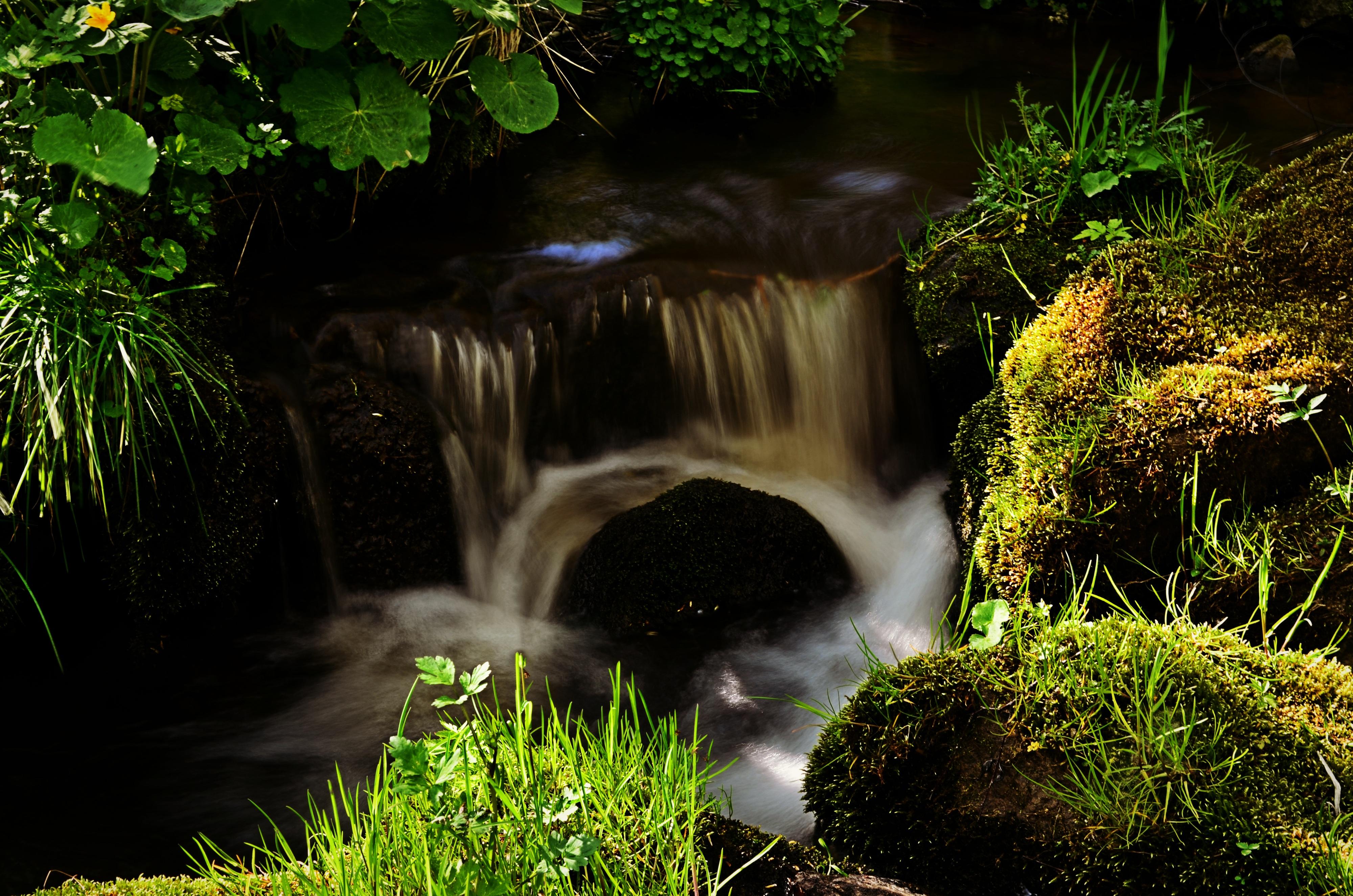 images gratuites arbre eau la nature herbe roche cascade plante lumi re du soleil. Black Bedroom Furniture Sets. Home Design Ideas