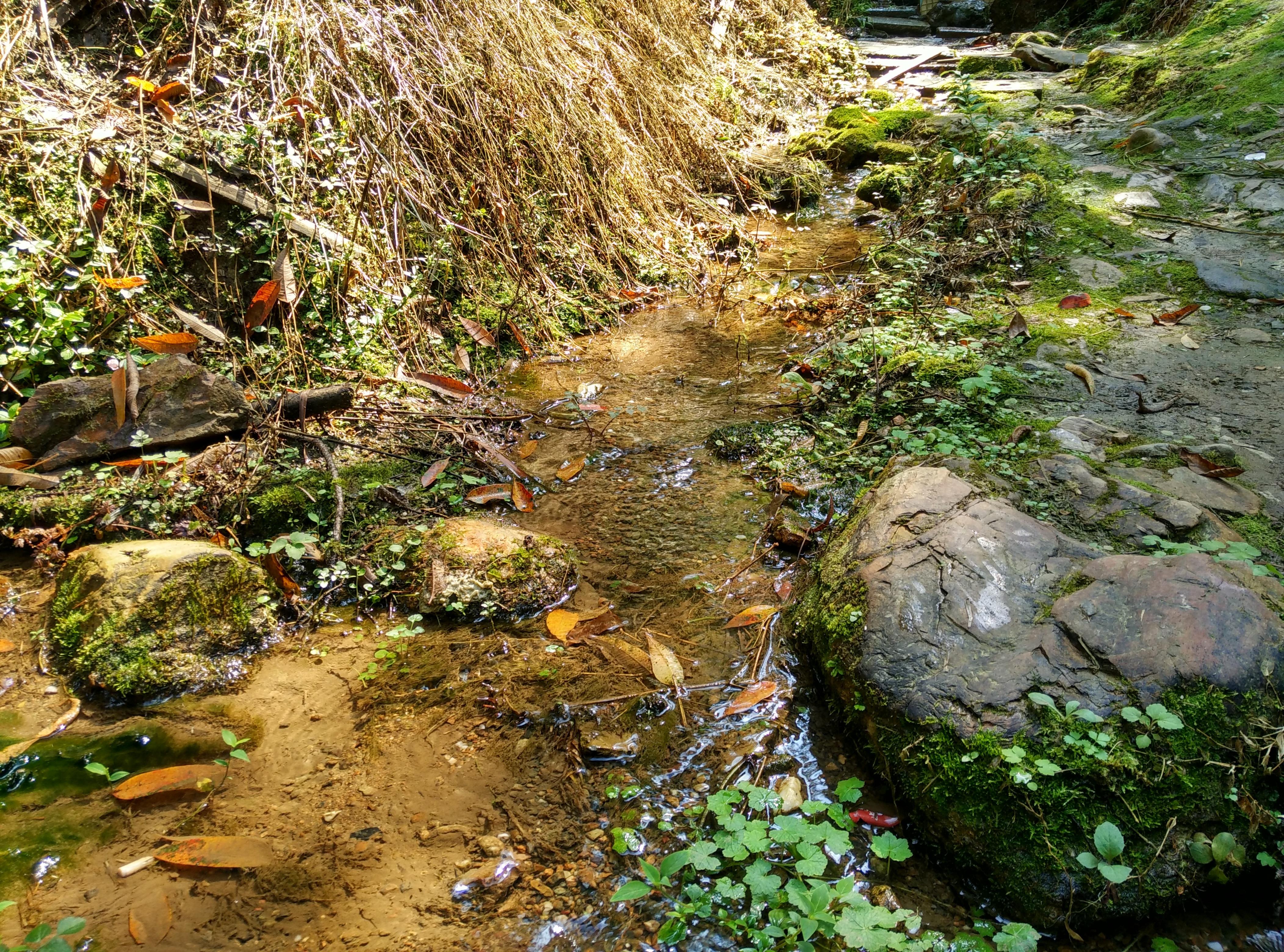 villmark stream