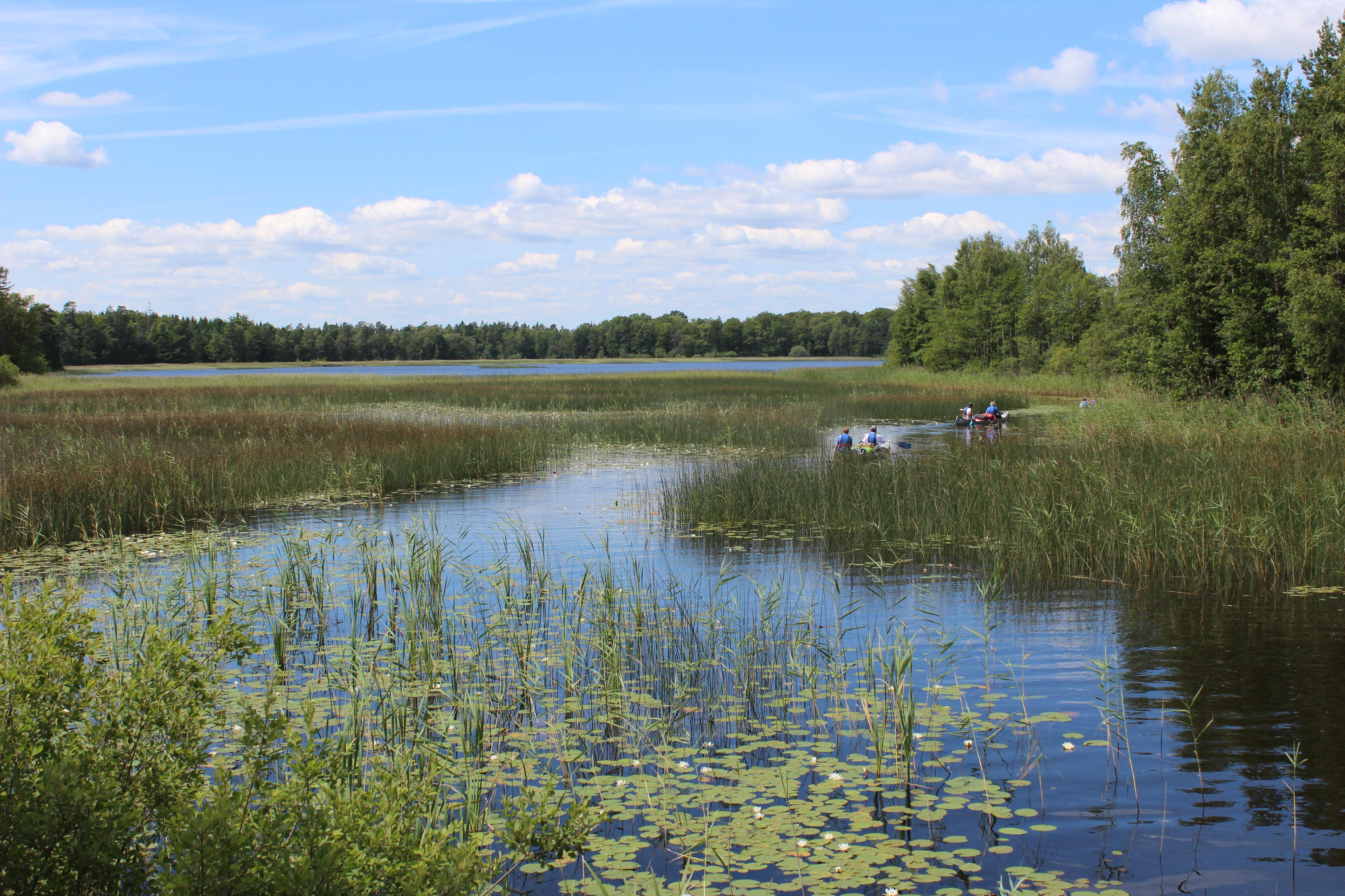 картинки рек озер болот украины герцогиня решили