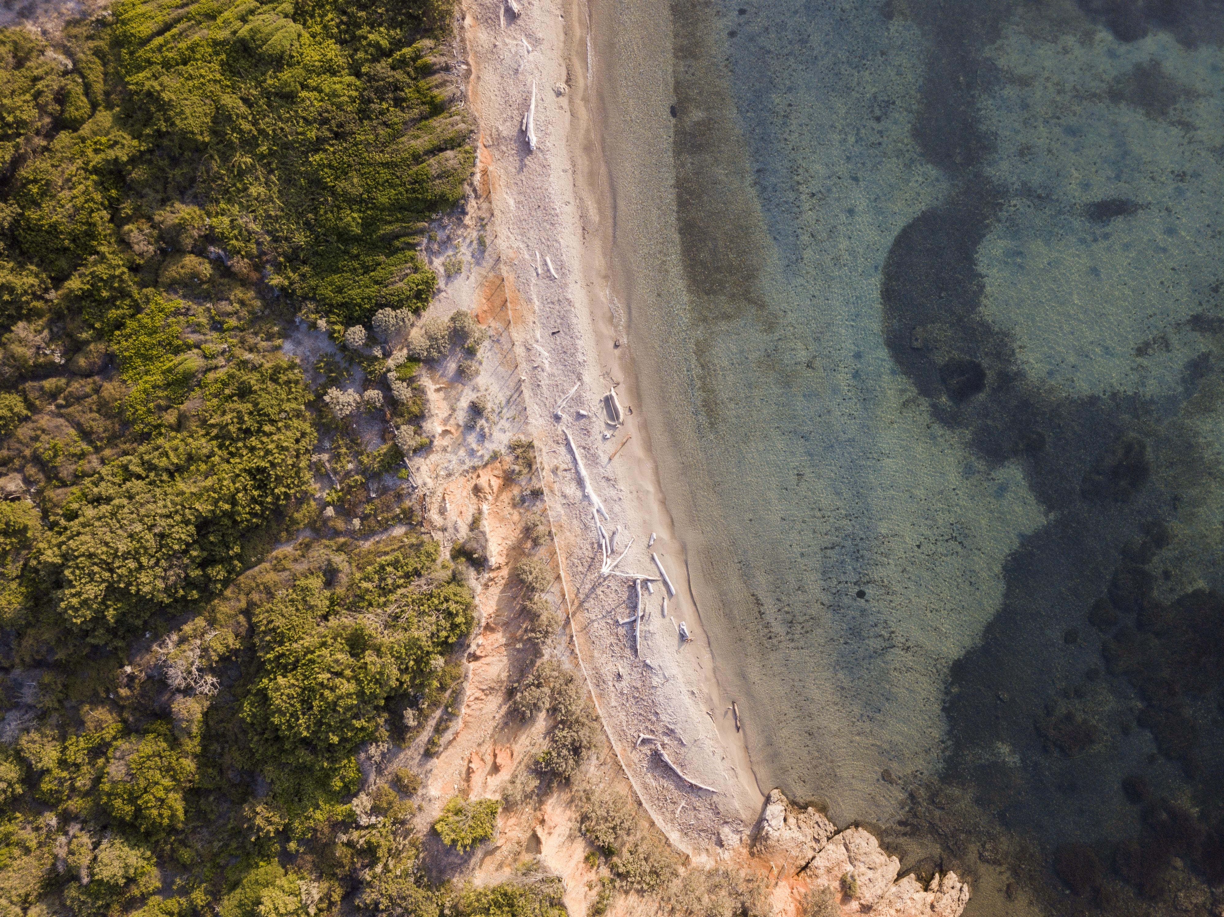 free images tree water rock sky cliff terrain geology