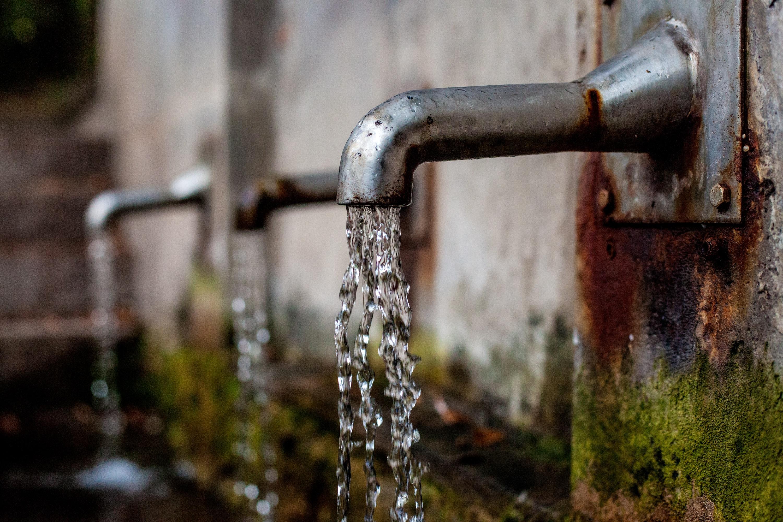 cây Nước Đài phun nước mát mẻ Vòi nước Đài phun nước Nước chạy uống nước