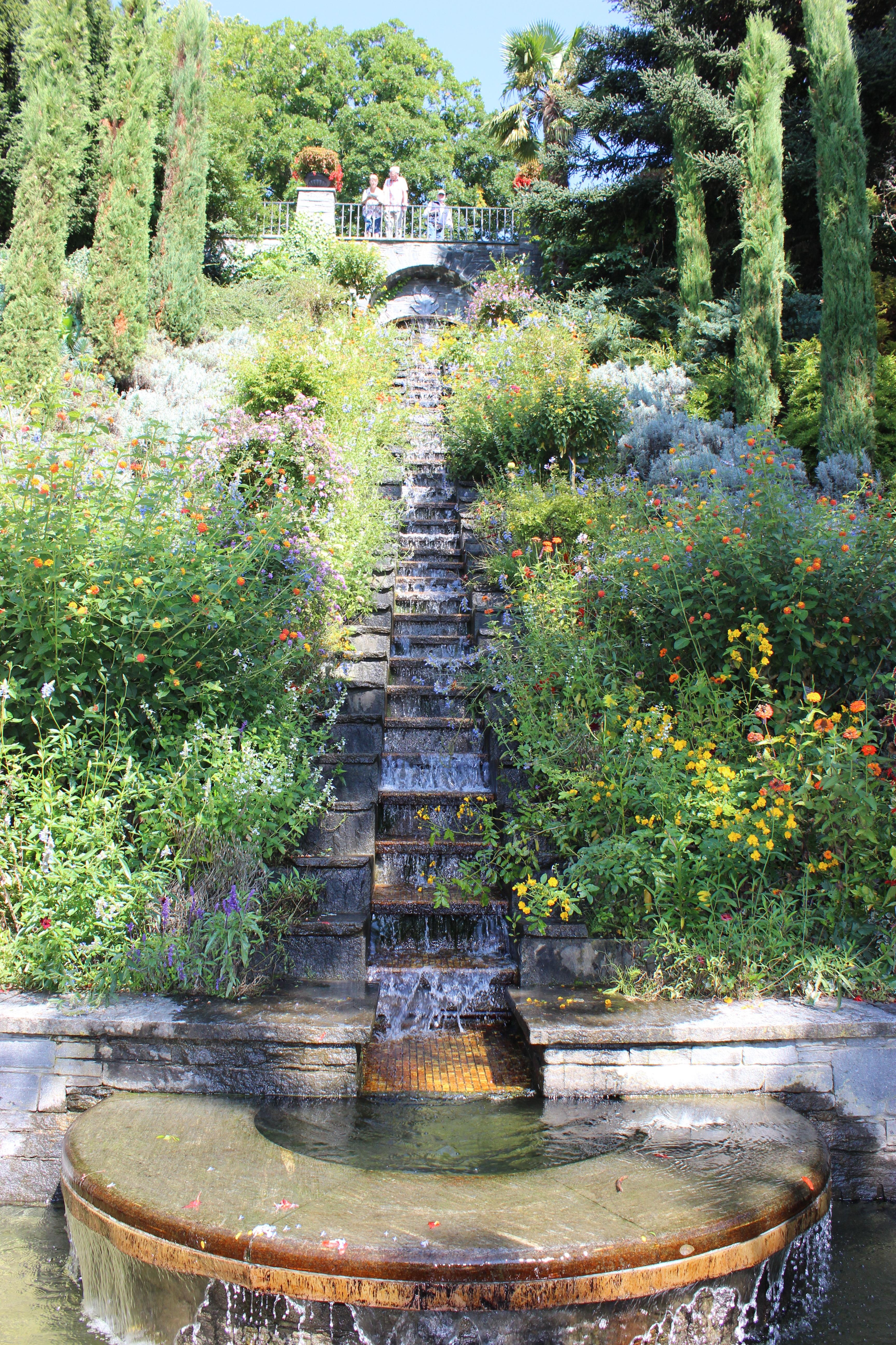 rbol agua cascada planta flor ver estanque otoo parque isla botnica jardn flores escalera fuente jardn
