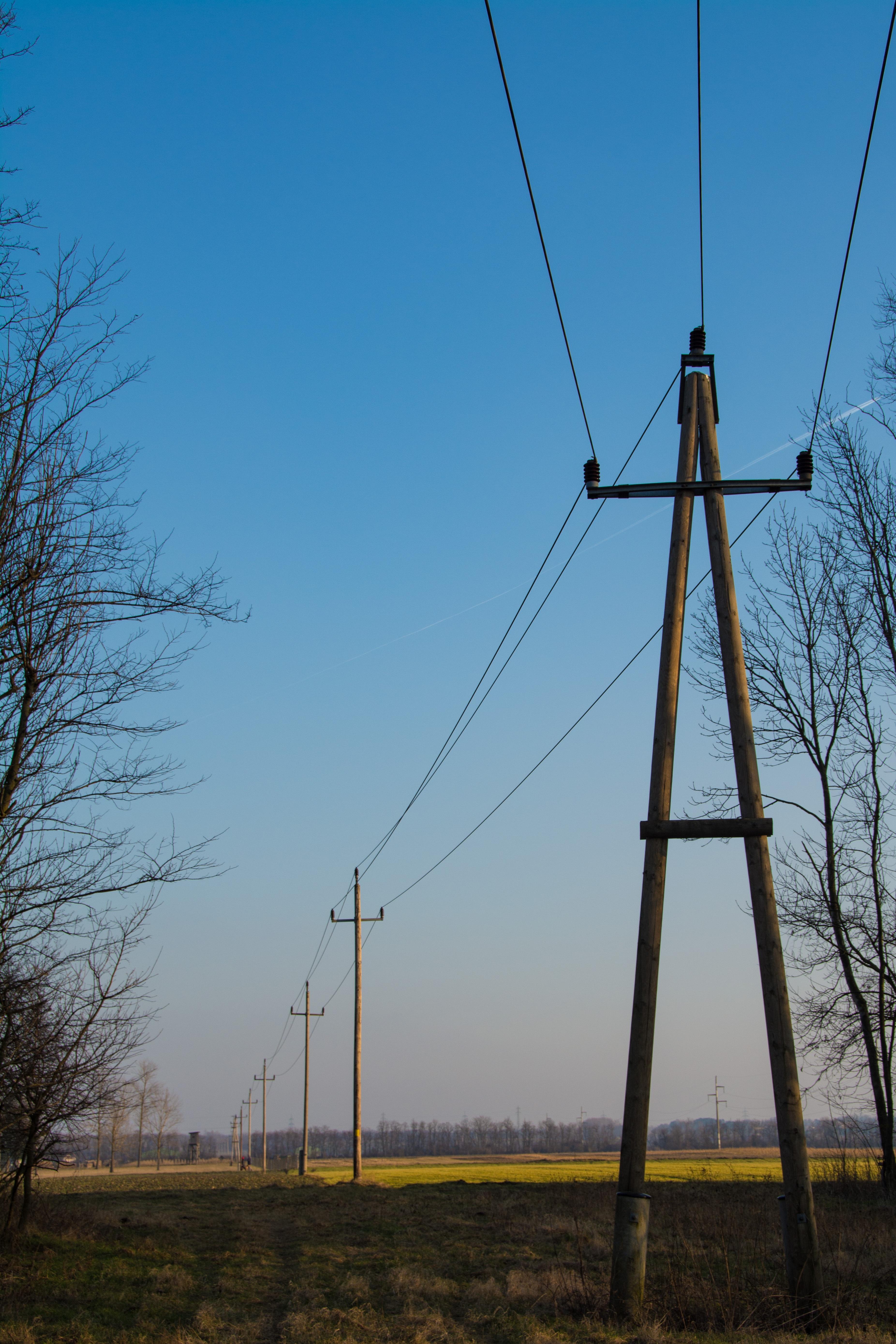 Fotos gratis : árbol, viento, línea, torre, Línea eléctrica, mástil ...