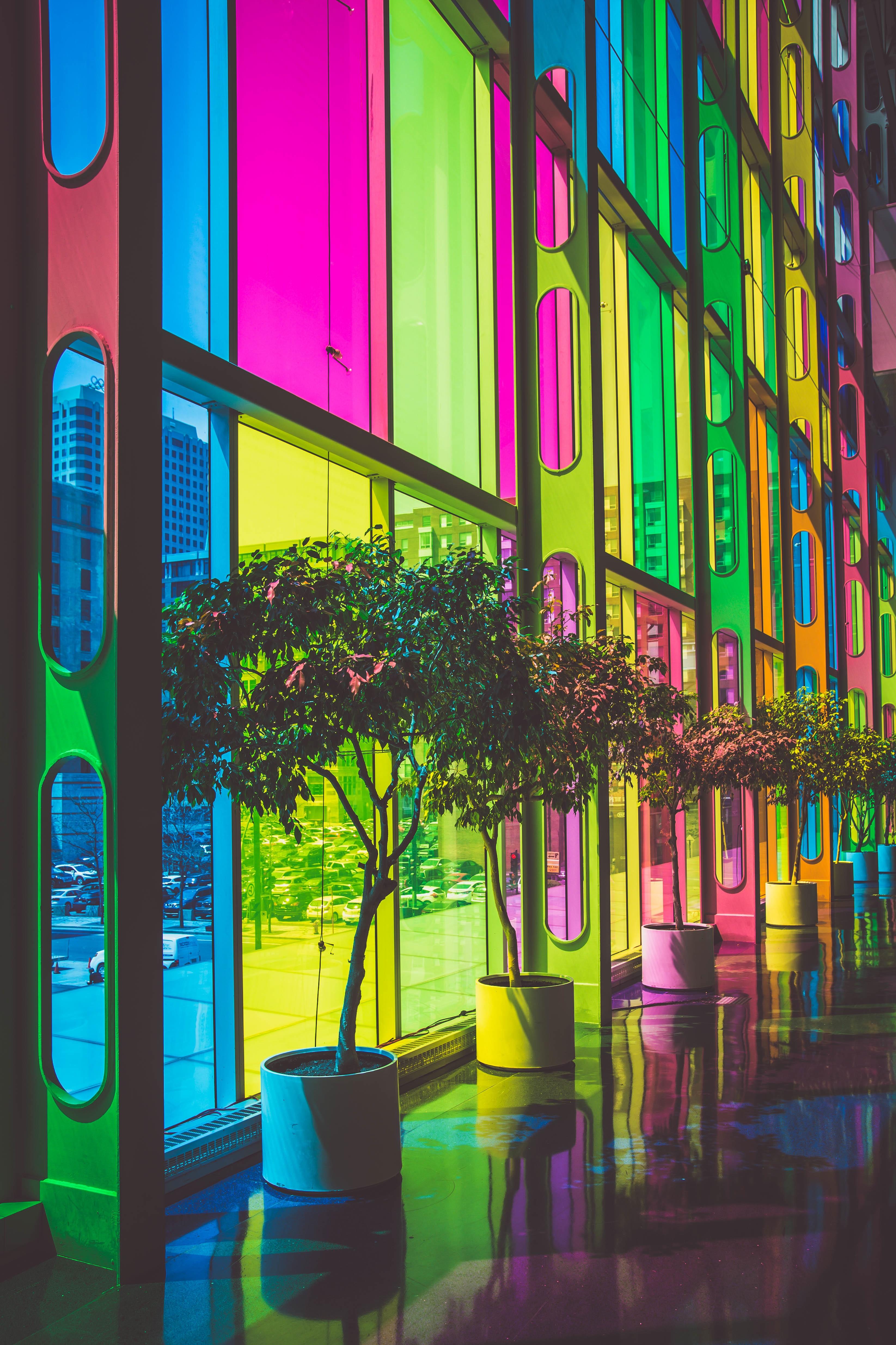 Tree Window Glass Color Facade Interior Design Art Rainbow Design Shape  Modern Art Urban Area