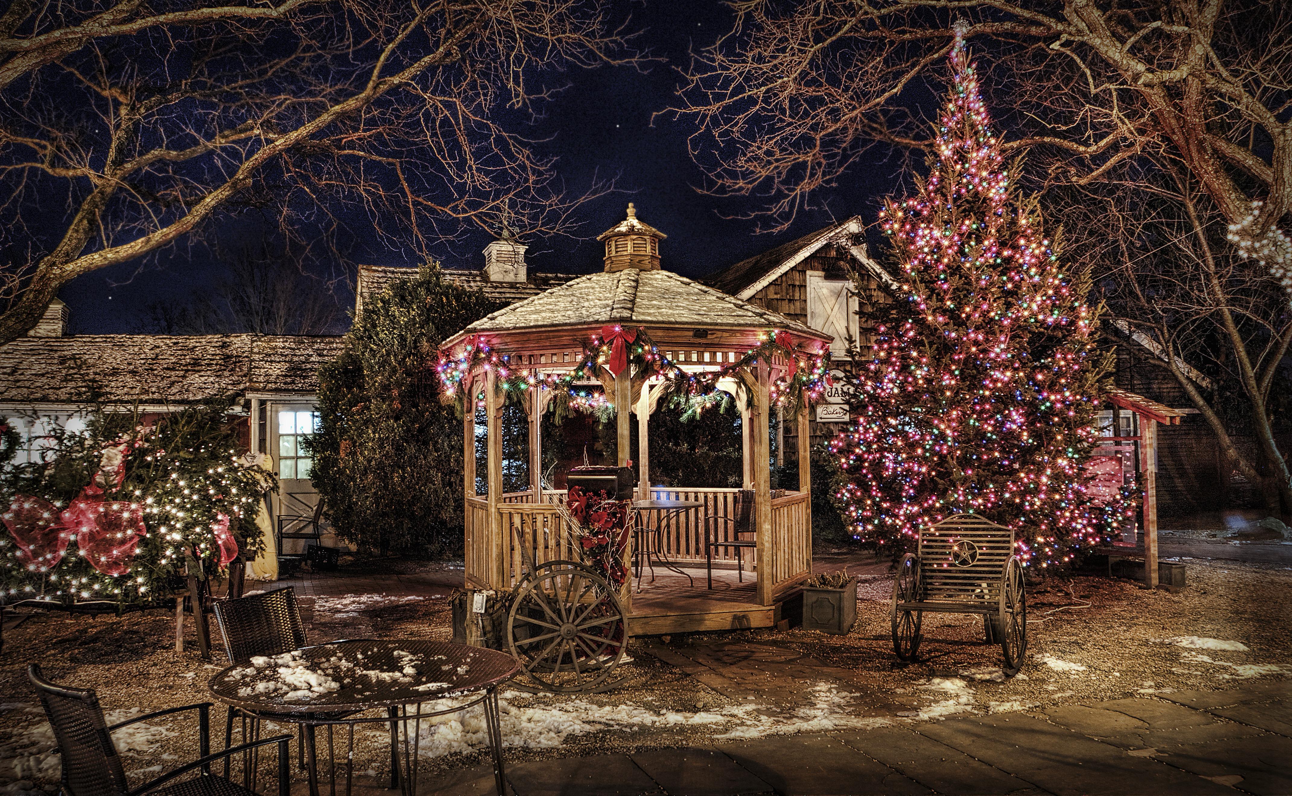 угодно, фотосессия зимой во дворе загородного дома сорта дордонь хорошо