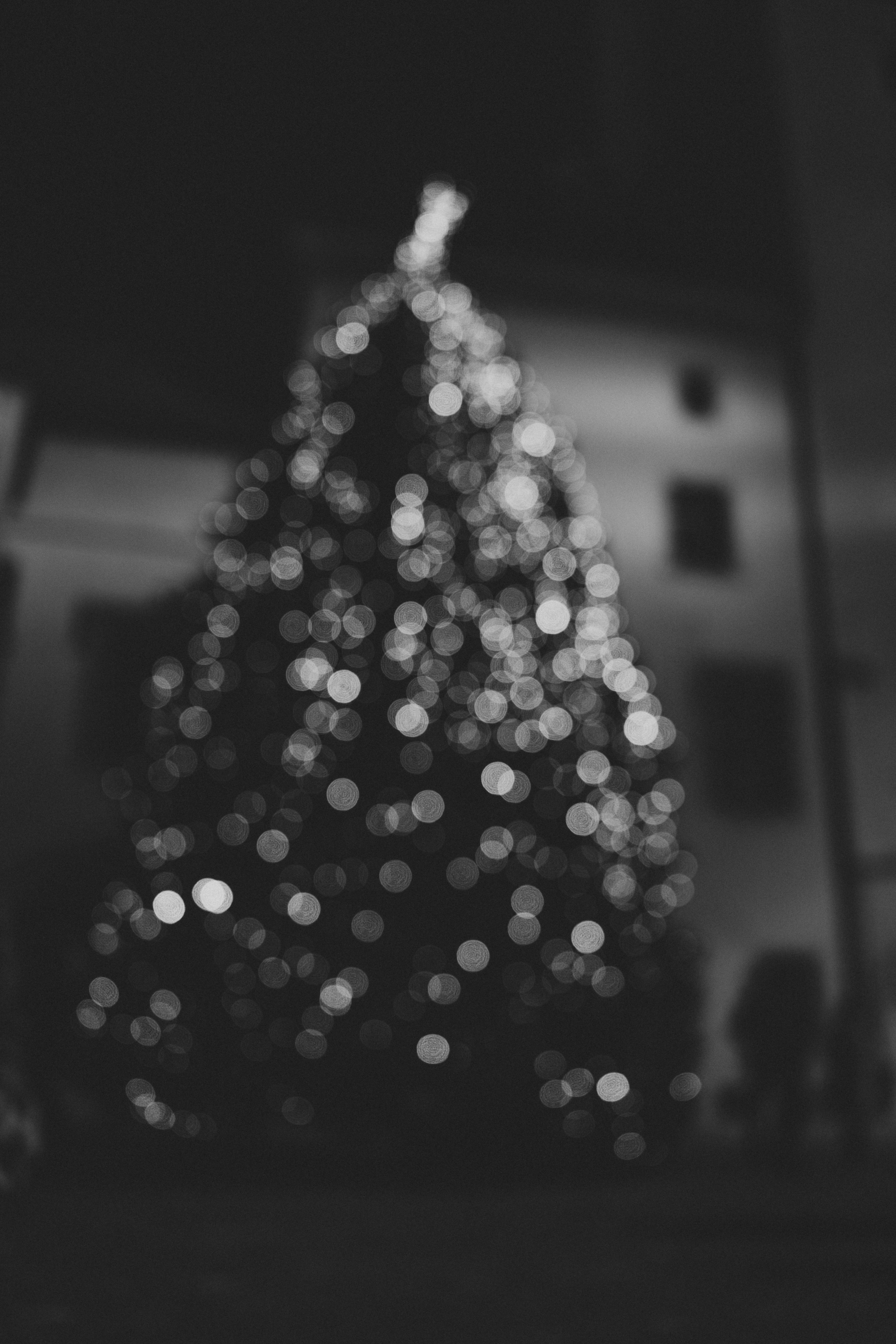 Gambar Pohon Musim Dingin Cahaya Bokeh Hitam Dan Putih Malam Bunga Eropah Kegelapan Satu Warna Hari Natal Penerangan Kedatangan Seni Mono Europa Jerman Kunst Atas Xmas Bentuk Weihnachten Weihnachtsbaum Monochrom Regensburg