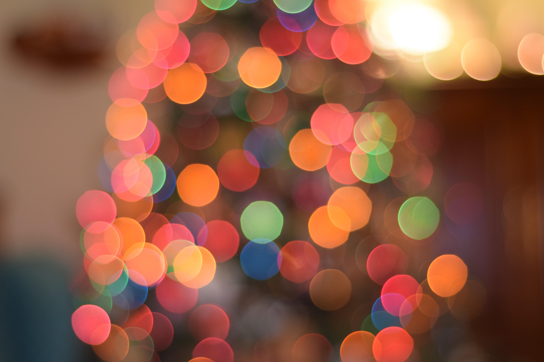 무료 이미지 : 나무, 겨울, 빛, 꽃잎, 유리, 풍선, 녹색, 빨간, 색깔 ...