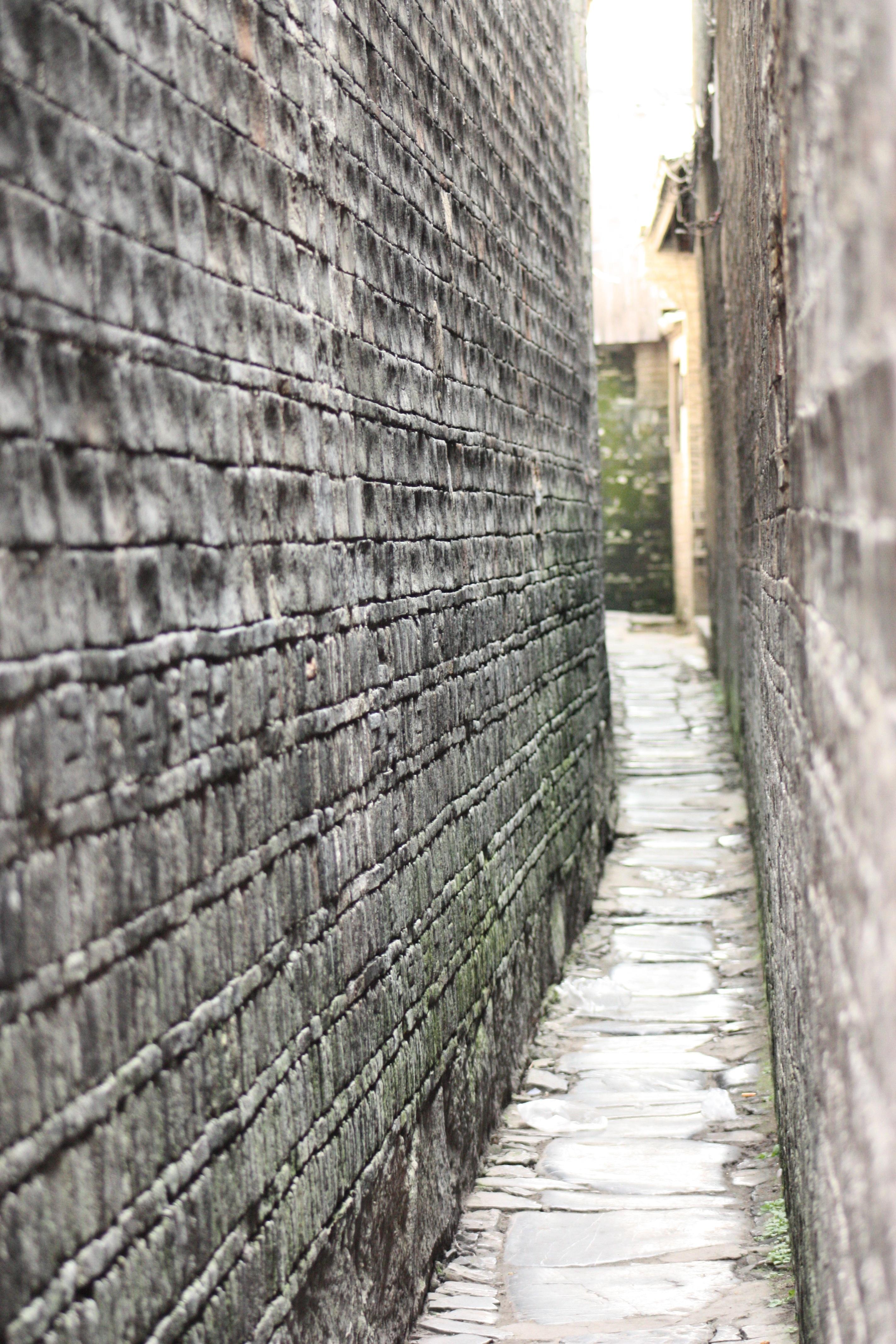 Tree Winter Wood Road Street Sidewalk Alley Cobblestone Wall Narrow Alleyway Brick Lane Material Infrastructure China
